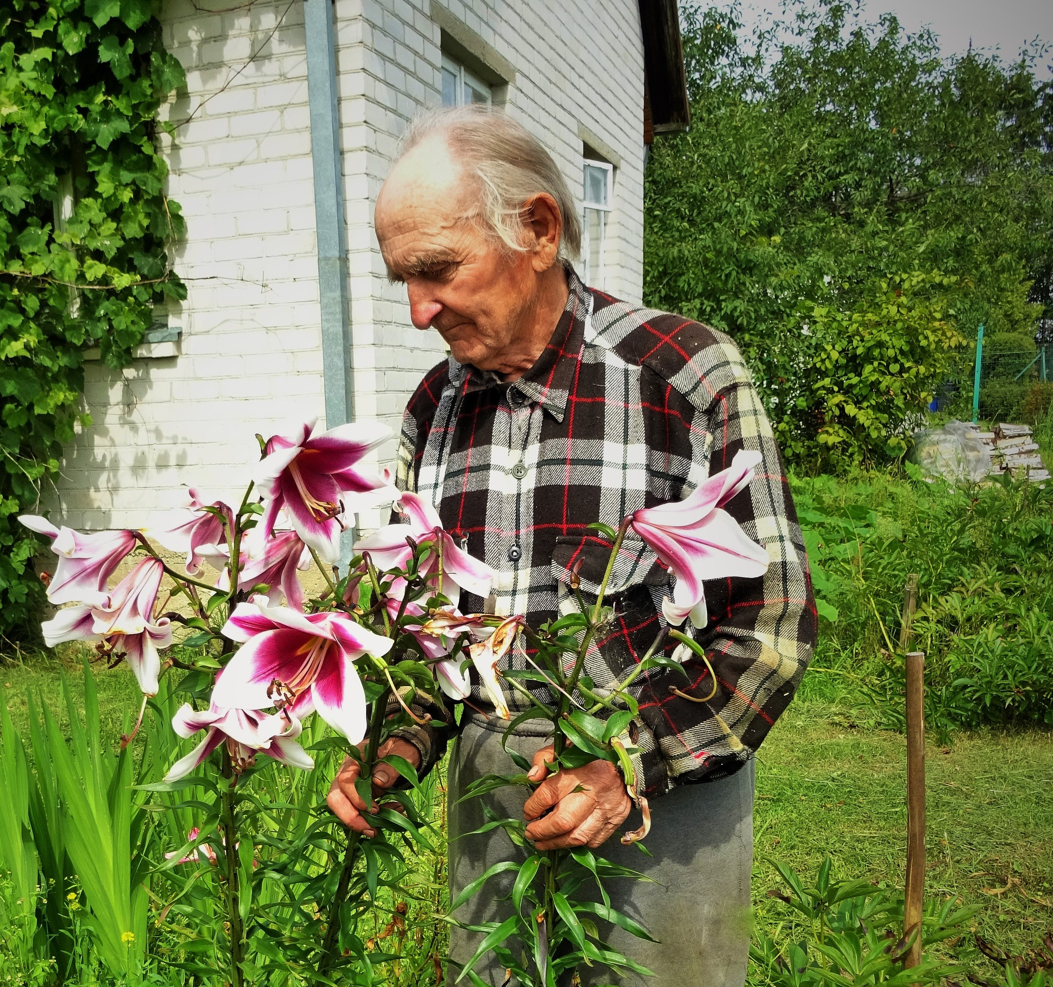 An old gardener. by vita.tucaite