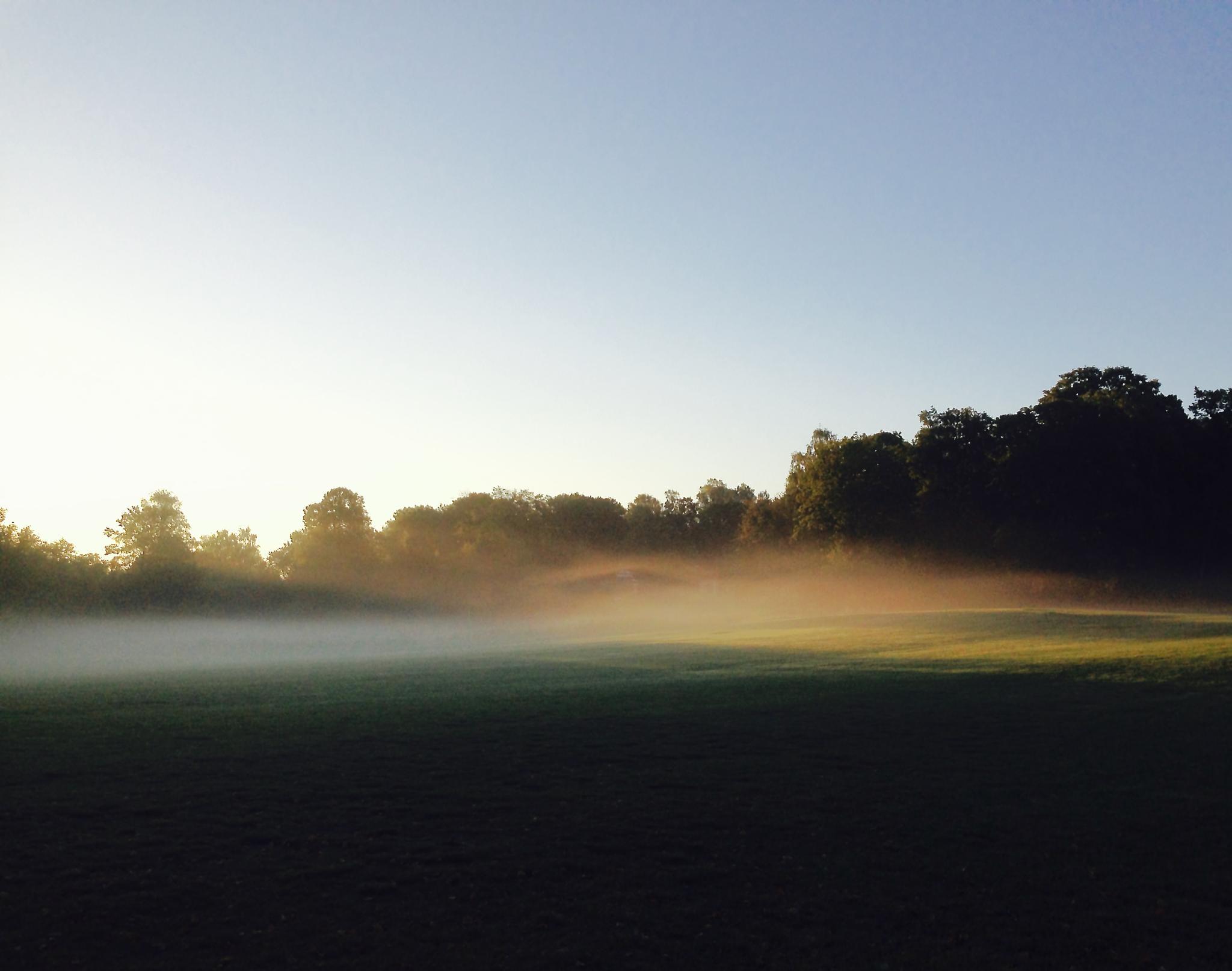 Misty morning, Kaknäs, Stockholm, Sweden by Lars Holmgren