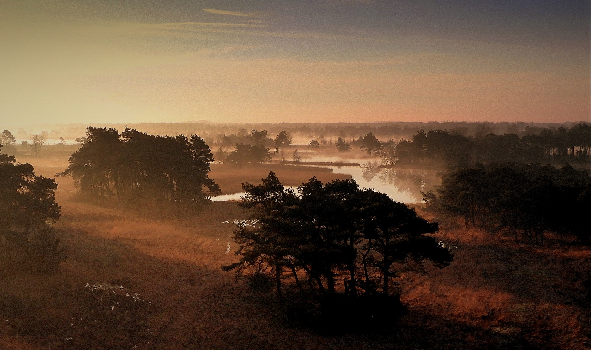 """this morning at nature reserve """"De Flaes"""". The photo is taken from a watchtower by johan.vandergouw"""