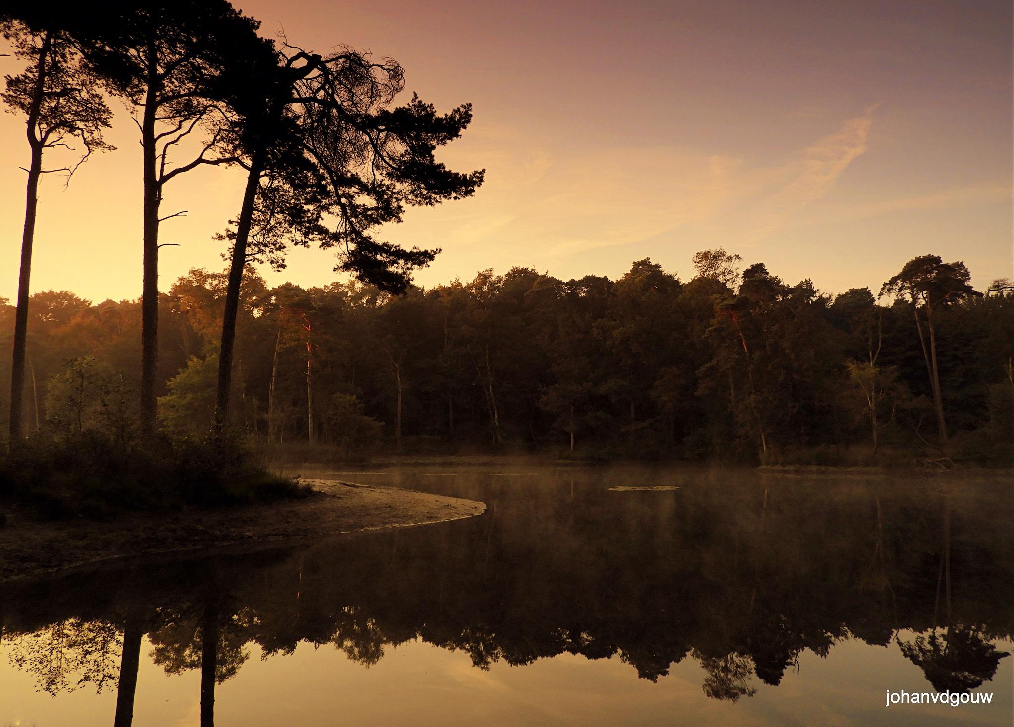 sunrise in Oisterwijk. by johan.vandergouw