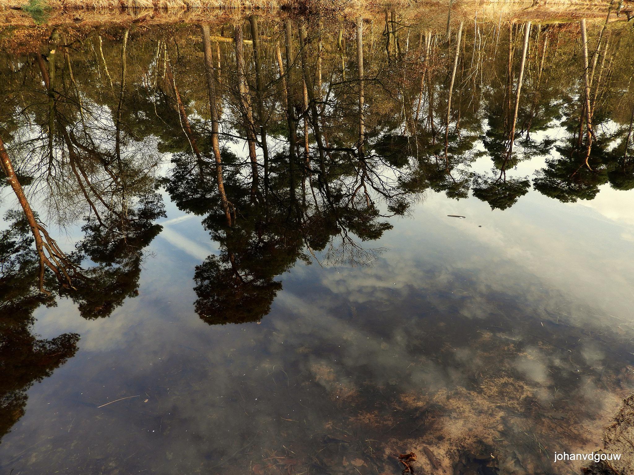 reflections3 by johan.vandergouw