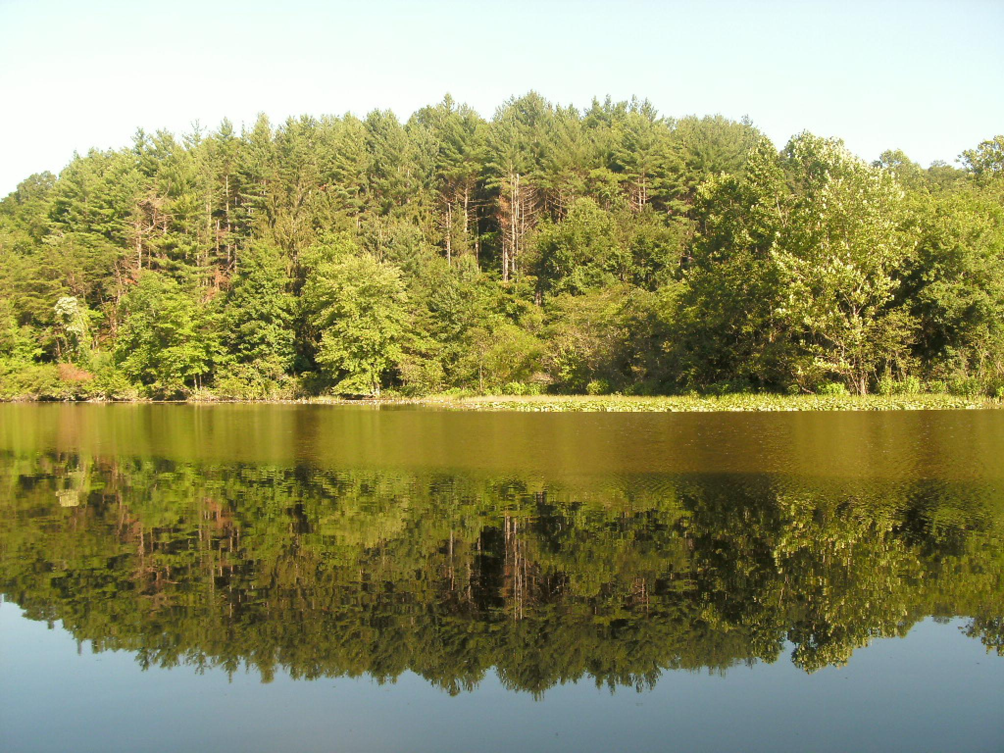 Lake Rupert by deanna.j.gallion