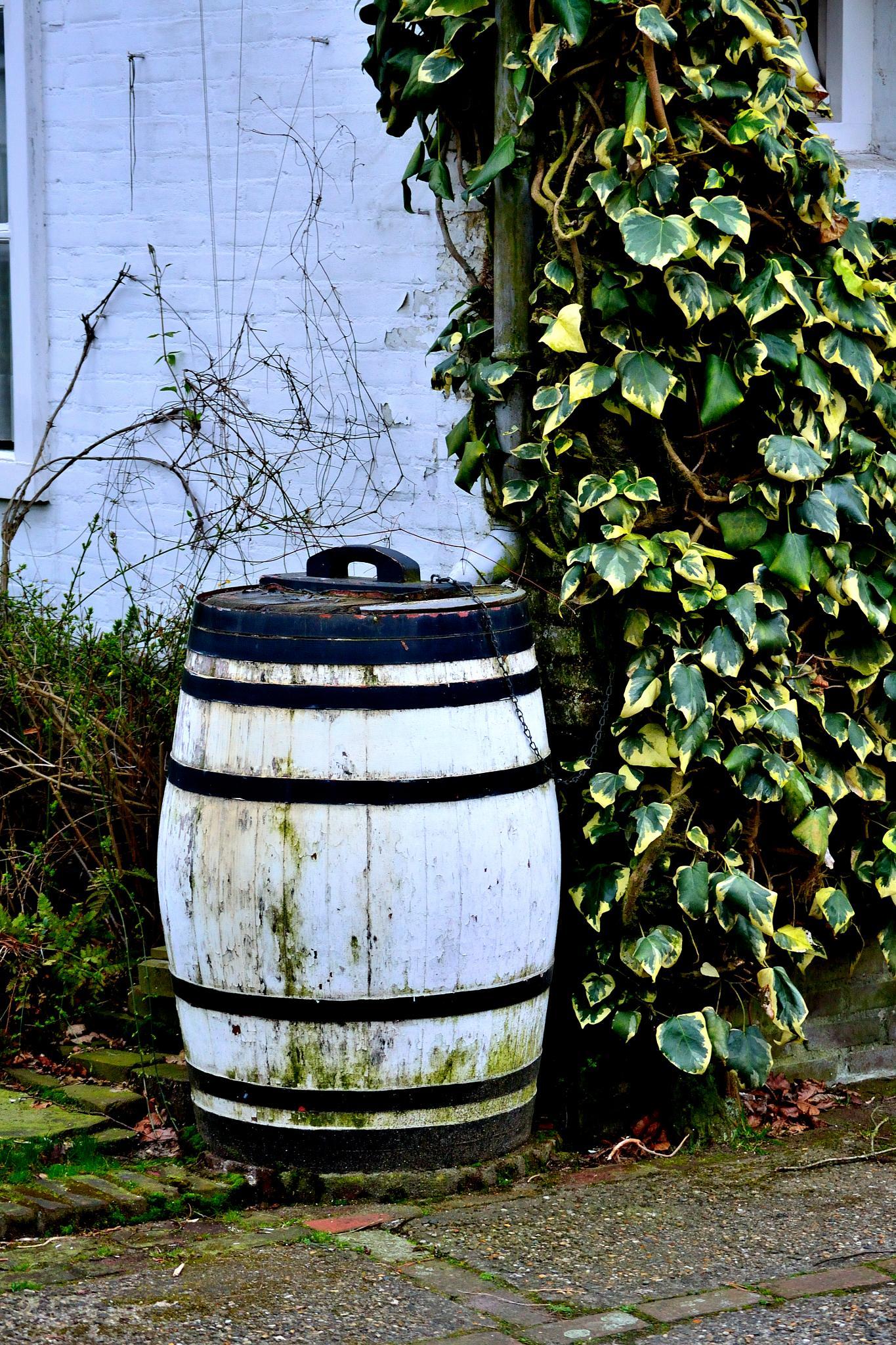 Water barrel by marco1977