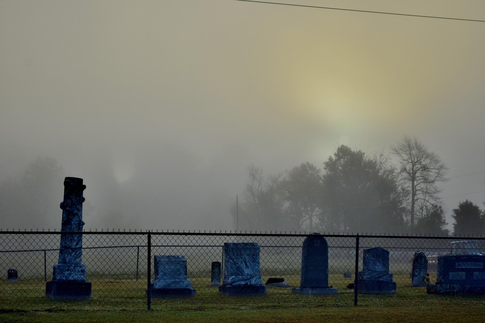 Foggy Sunrise 8 by Lawrence Scott Hess