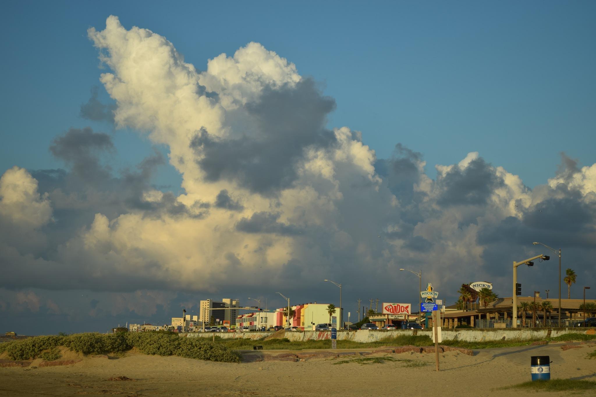 Galveston 242 by Lawrence Scott Hess
