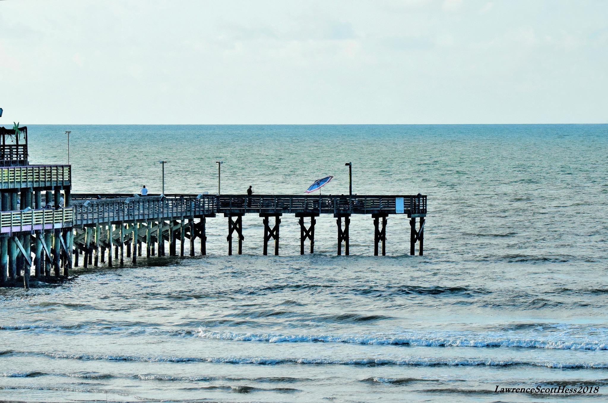 Galveston 222~The Ocean  by Lawrence Scott Hess