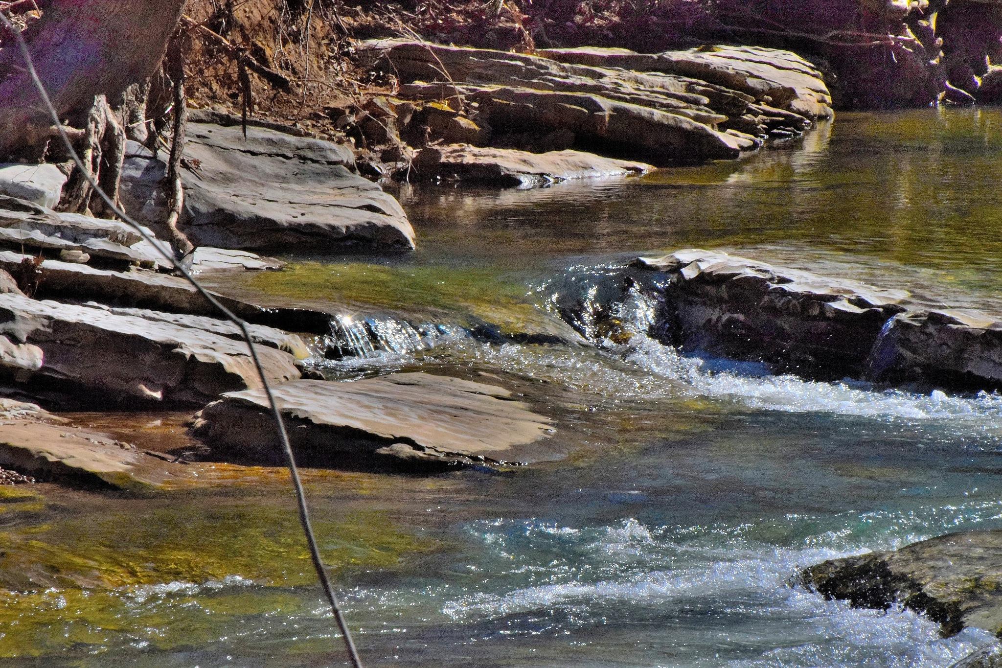 Todays Art 6251~The Creek Rocks by Lawrence Scott Hess