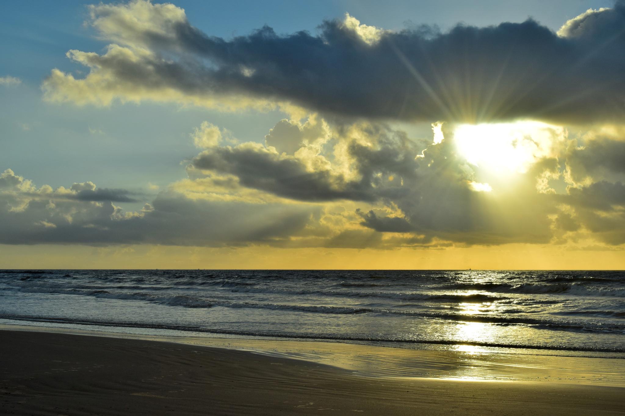 Galveston Tx 156~Bright Sunrise by Lawrence Scott Hess