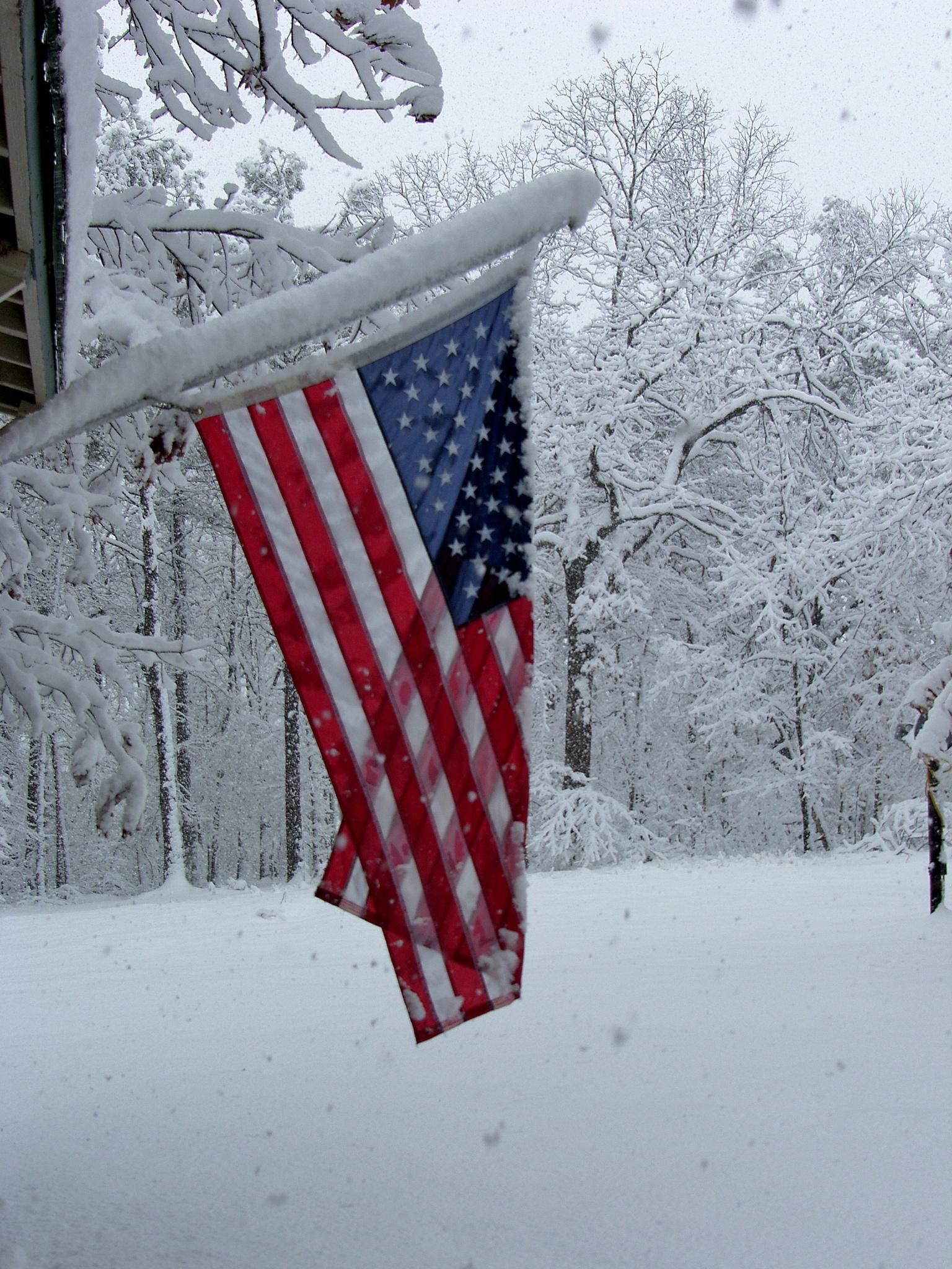 Snow 311~American Winter by Lawrence Scott Hess