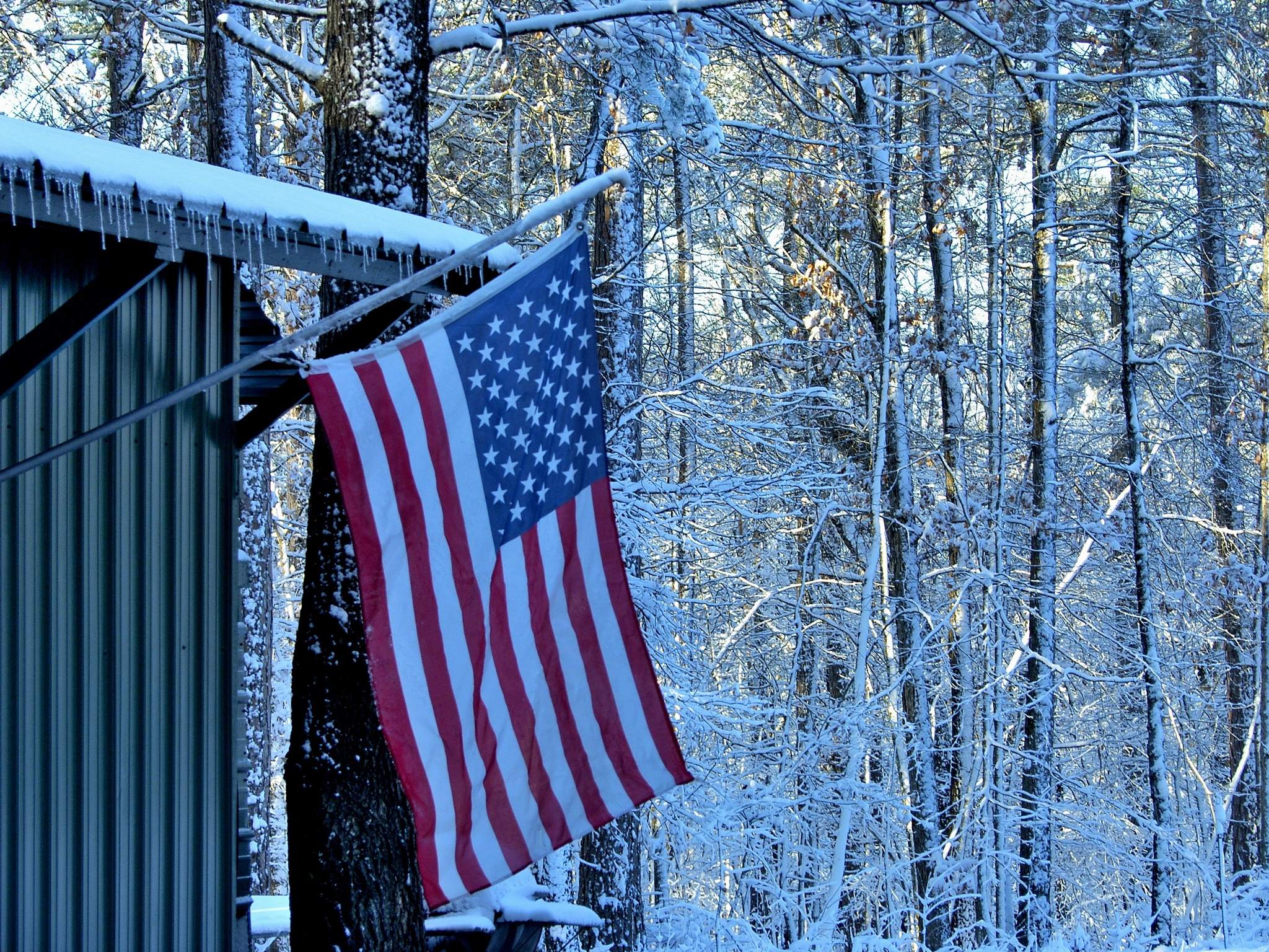 Snow 11~American Flag And Icicles by Lawrence Scott Hess