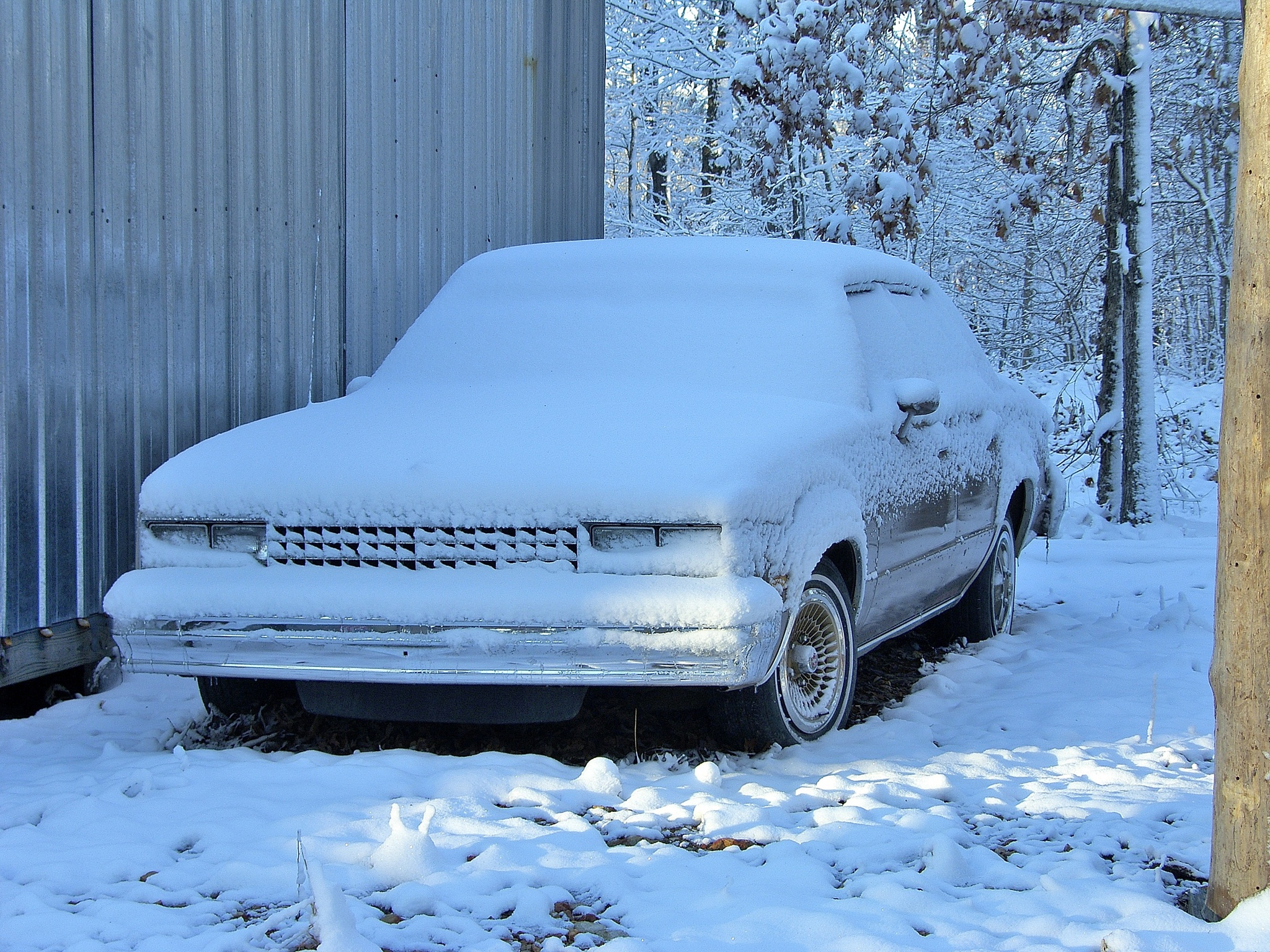 Snow 22~Chevy Malibu Classic by Lawrence Scott Hess
