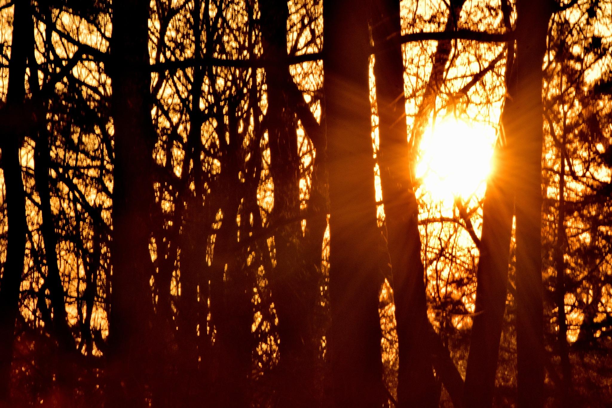 Todays Art 4292~ An Arkansas Sunset by Lawrence Scott Hess