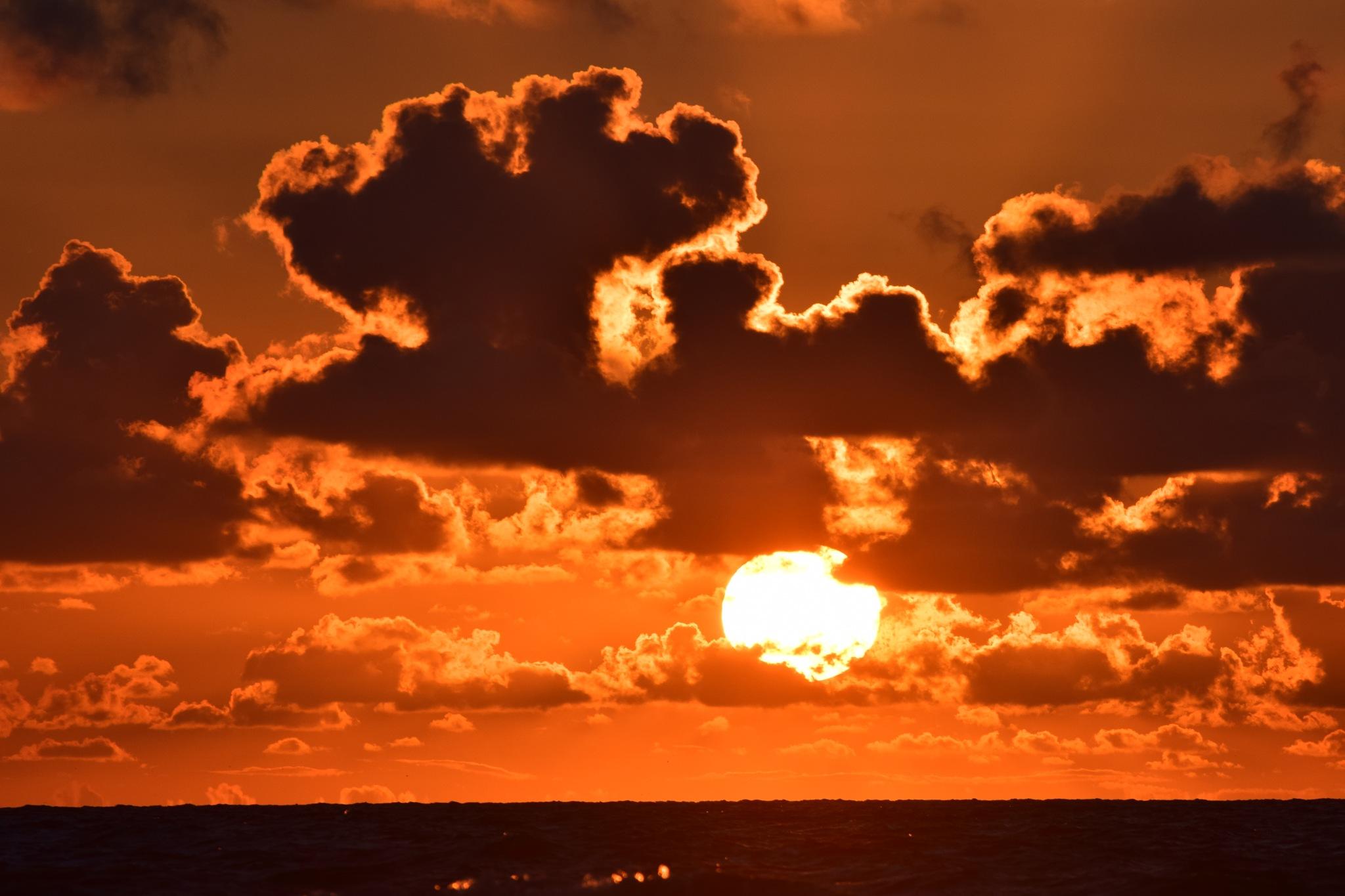 Galveston 211~The Firey Golden Sun by Lawrence Scott Hess