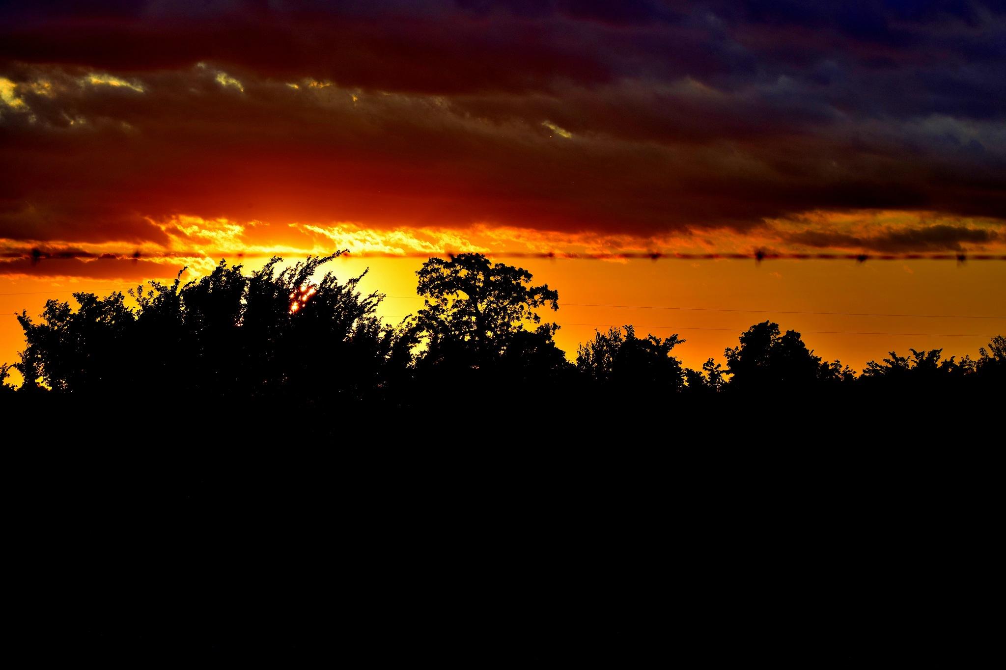 Todays Art 4525~Arkansas Sunset by Lawrence Scott Hess