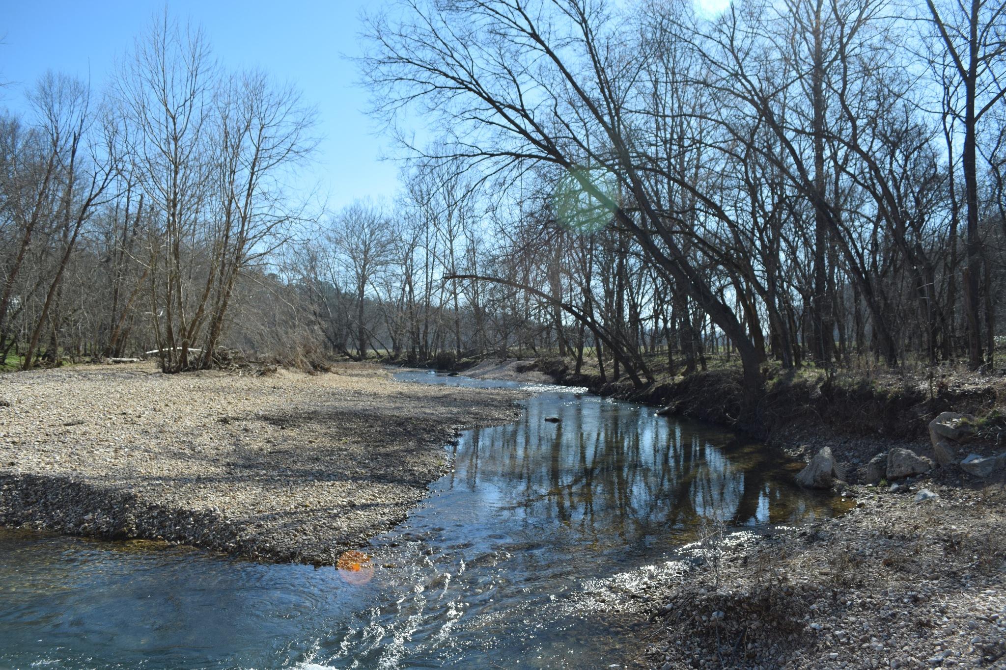 Todays Art 6260~Creek Reflections by Lawrence Scott Hess