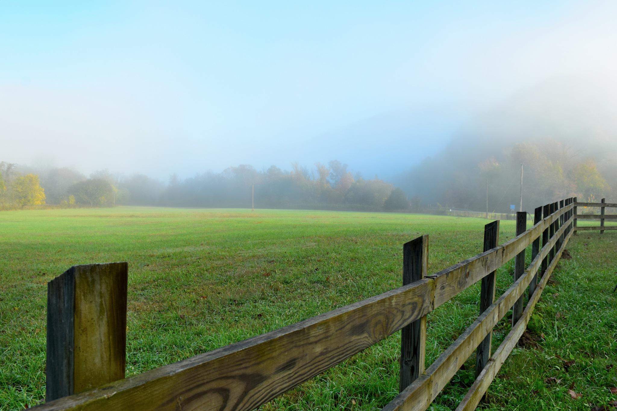 Foggy Sunrise 19 by Lawrence Scott Hess