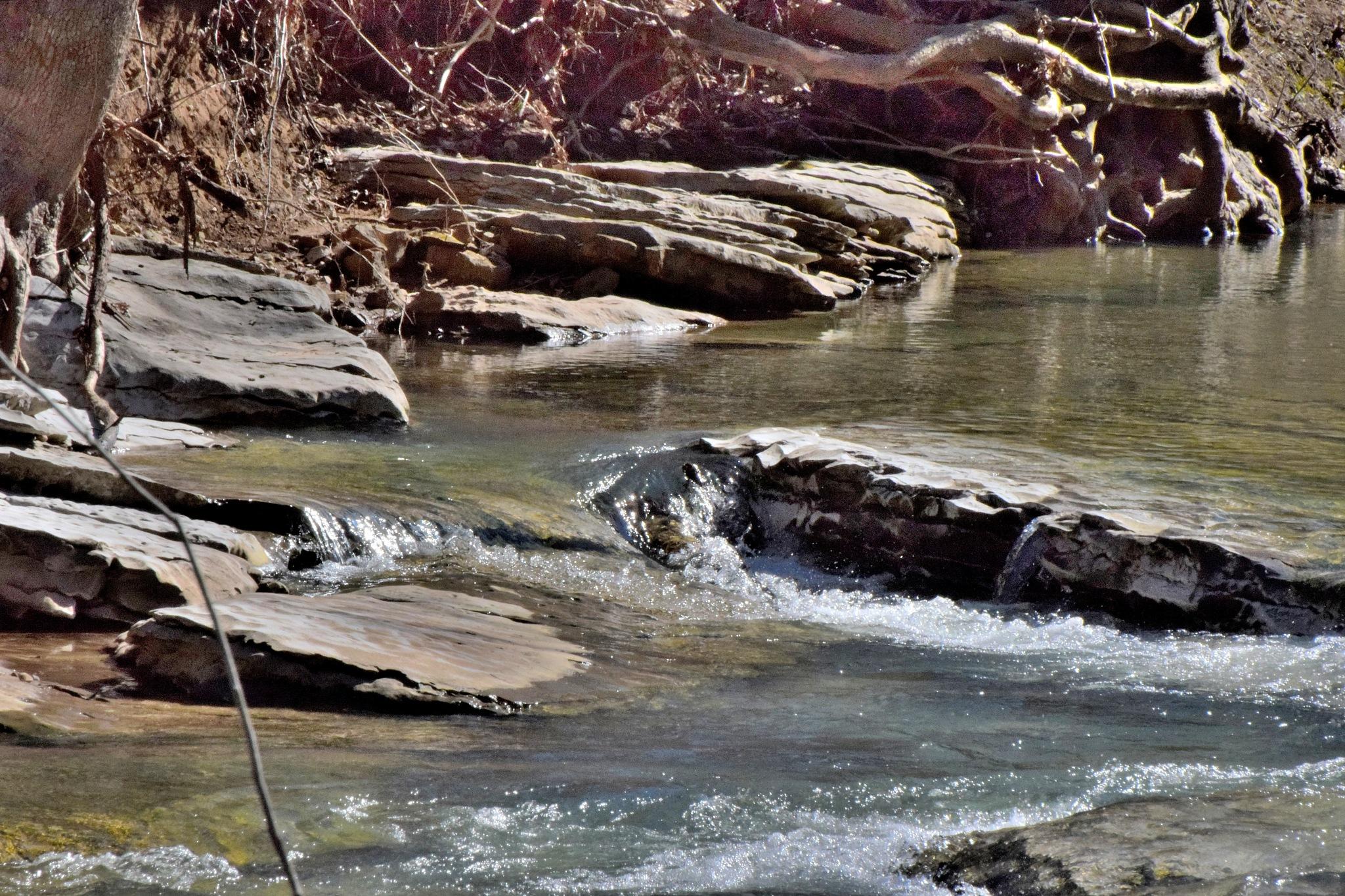 Todays Art 6250~Creek Water by Lawrence Scott Hess