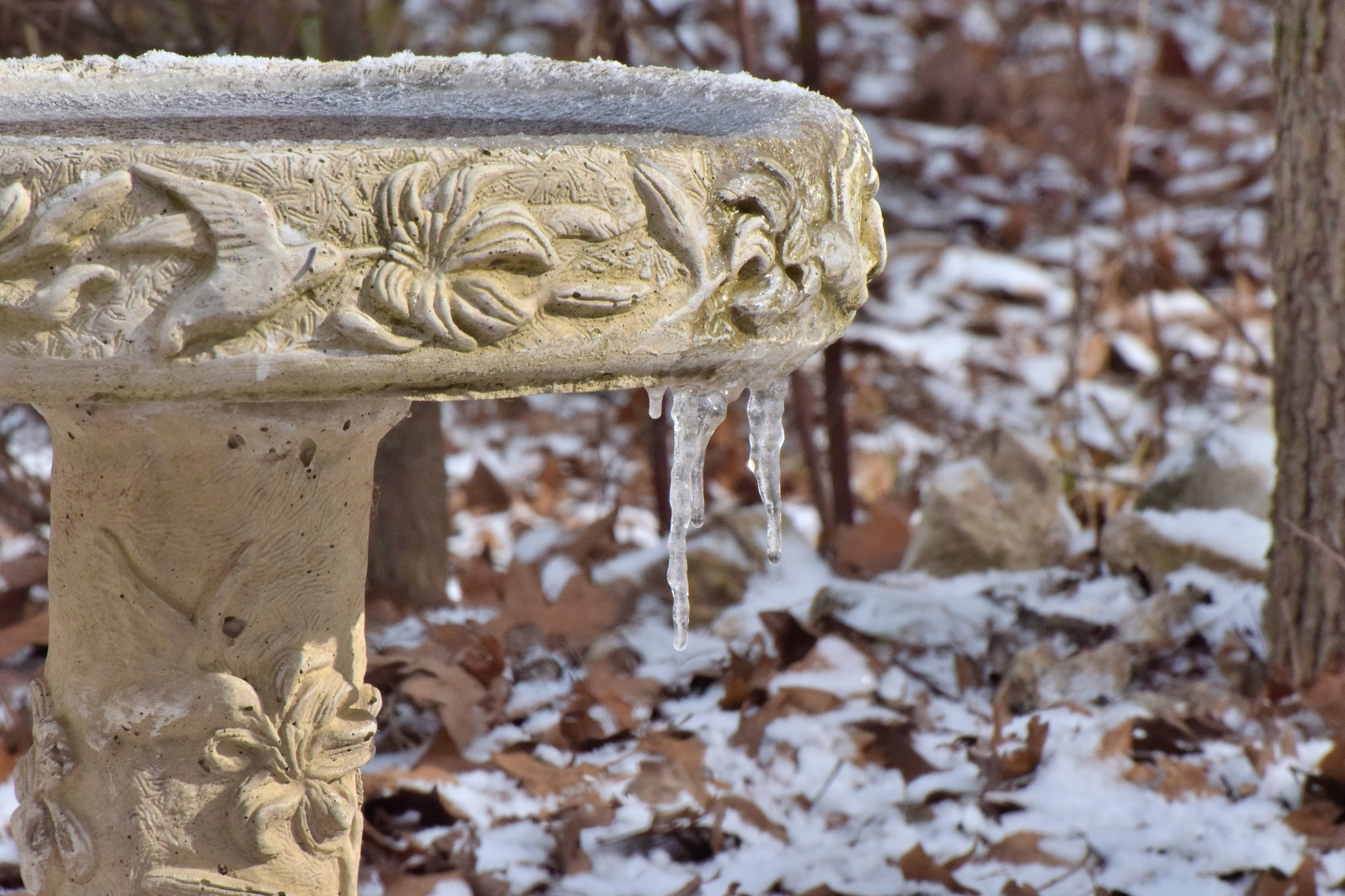 Todays Art 6110~The Frozen Birdbath by Lawrence Scott Hess