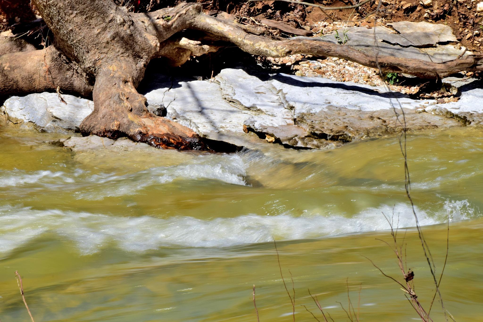 Todays Art 6310~Creek Rapids by Lawrence Scott Hess