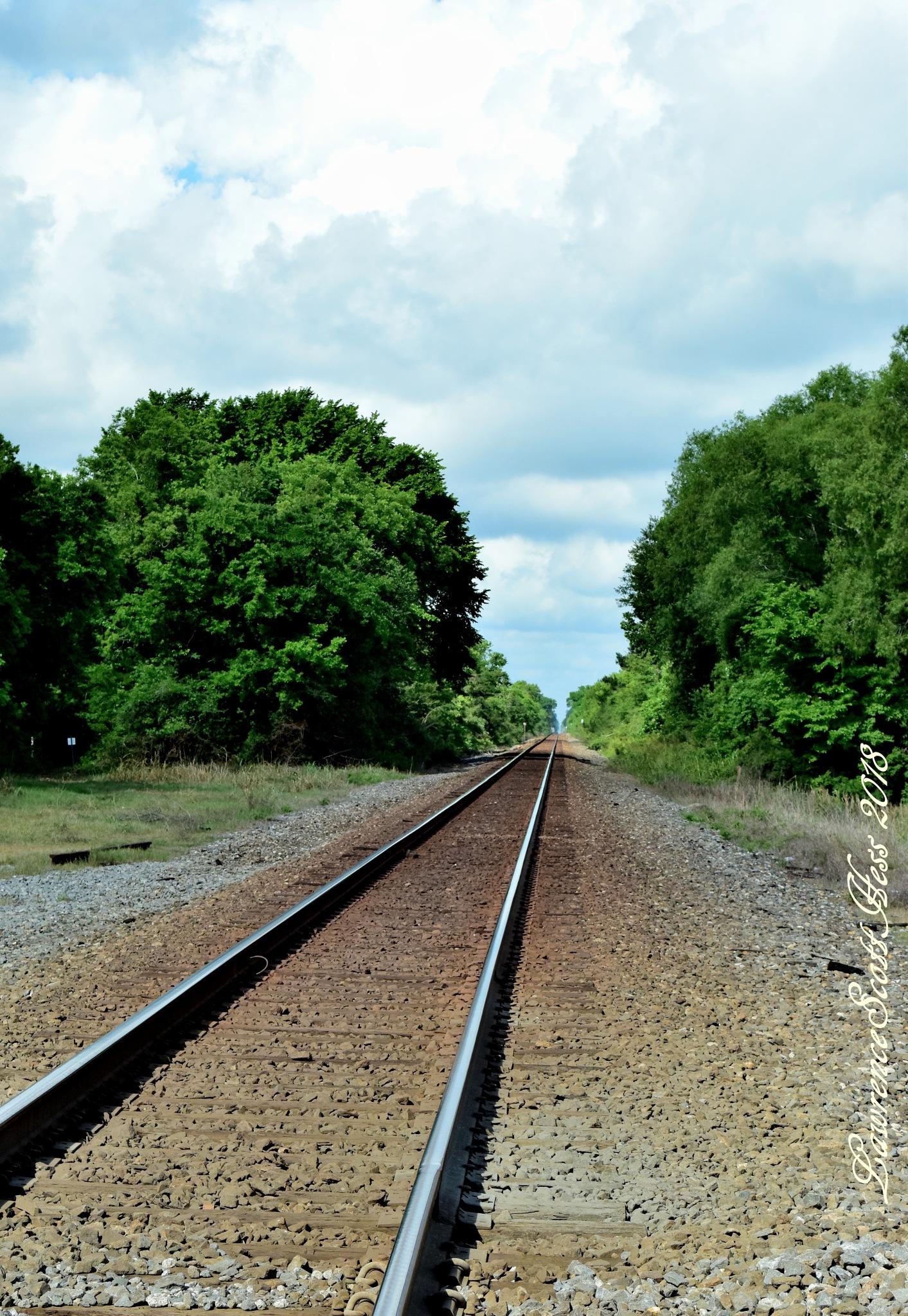 Scotty's Art 1351~The Railroad Tracks by Lawrence Scott Hess