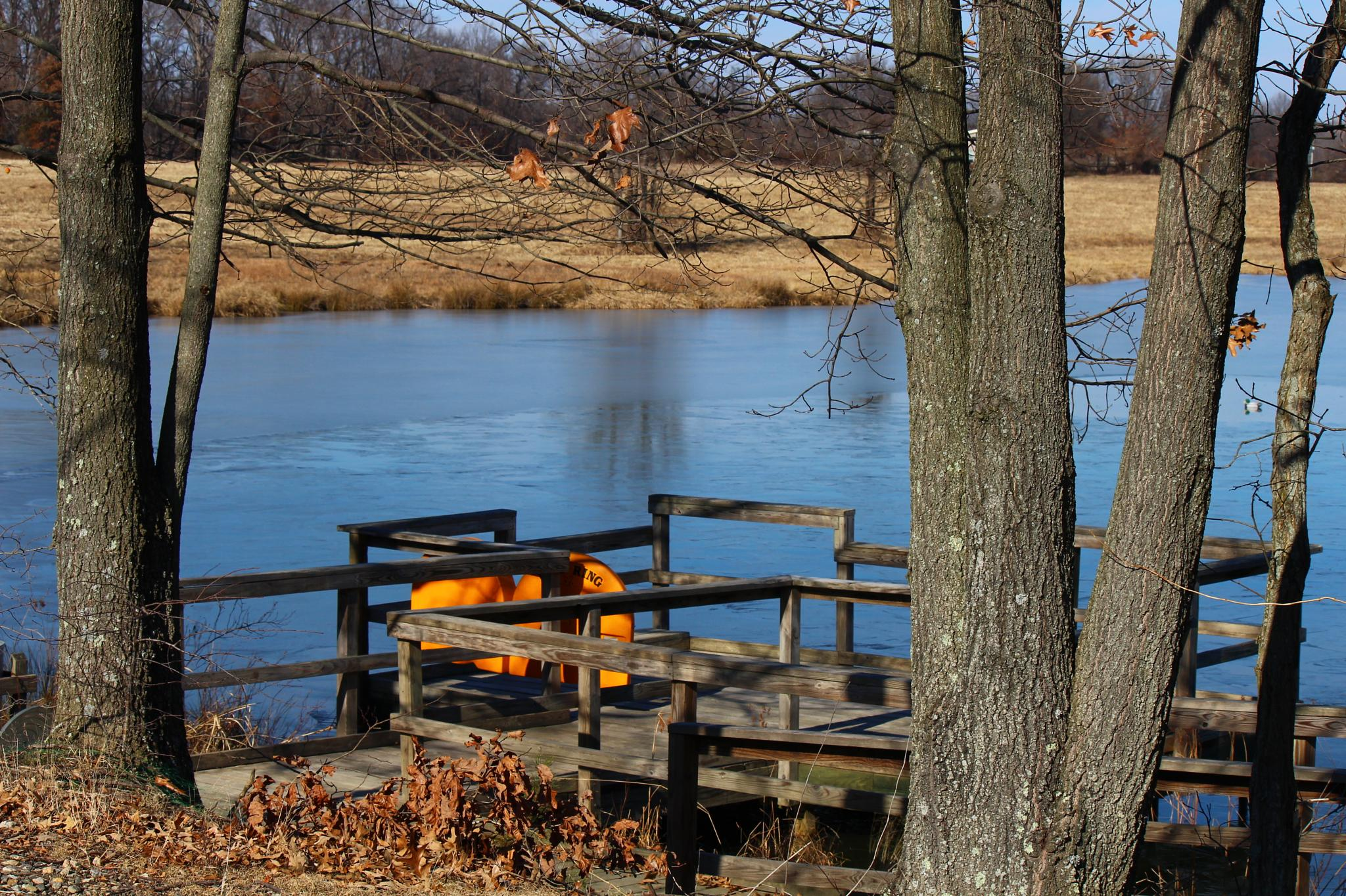Frozen Pond on a Cold Day by Clark L. Roberts