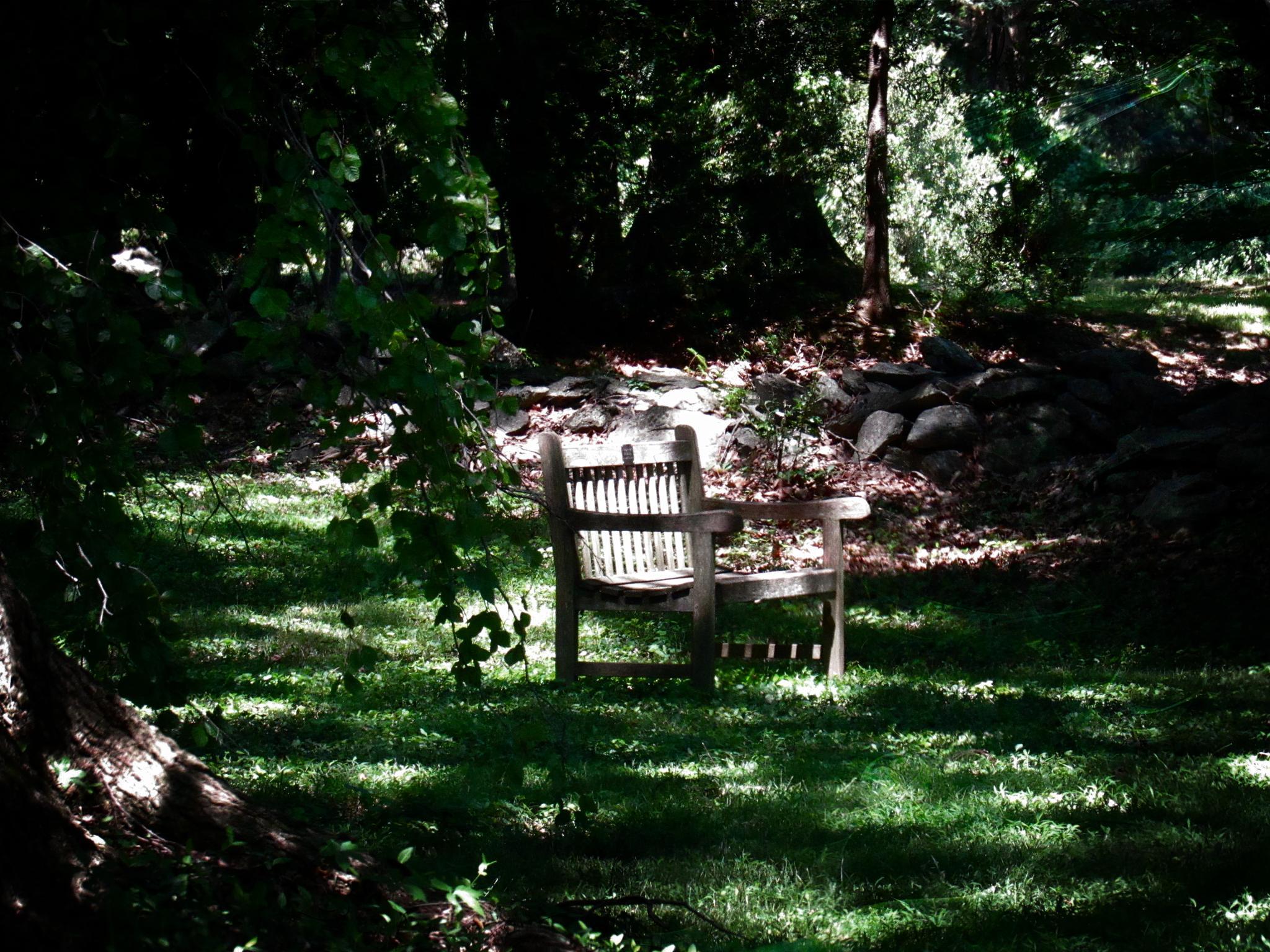 My Peaceful Place by Catherine Wegener