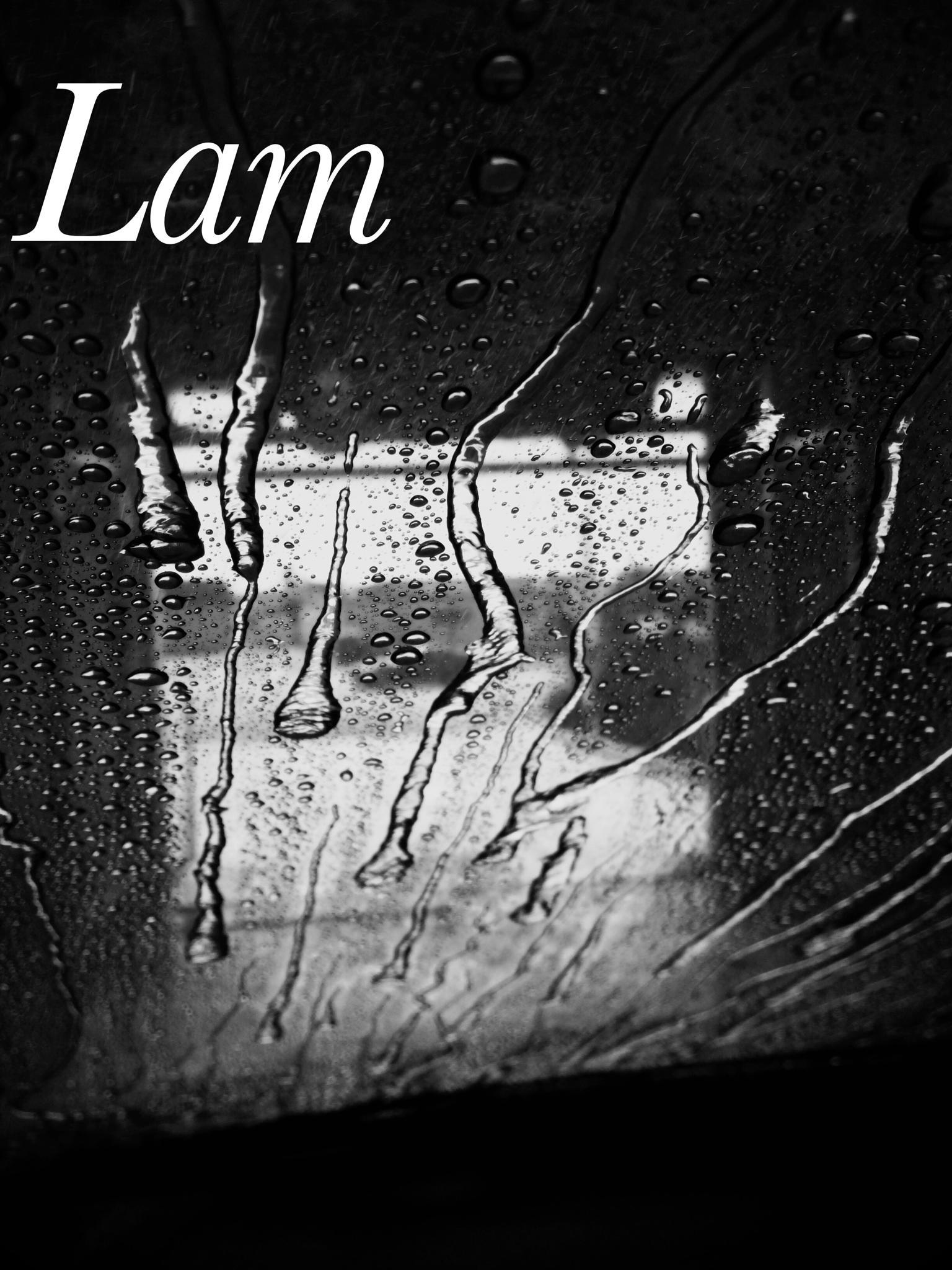 Car wash by leam1972