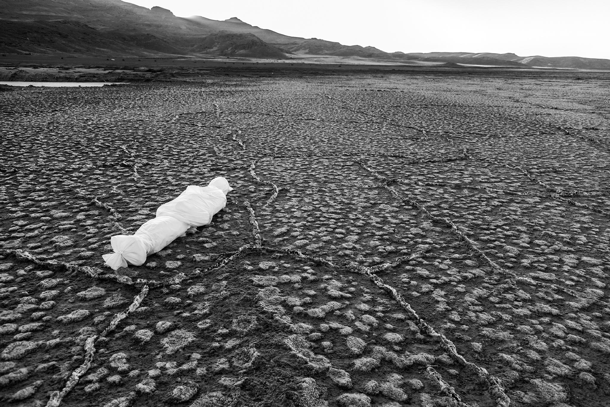 destruction of nature destruction of humans by Ali Rezvani
