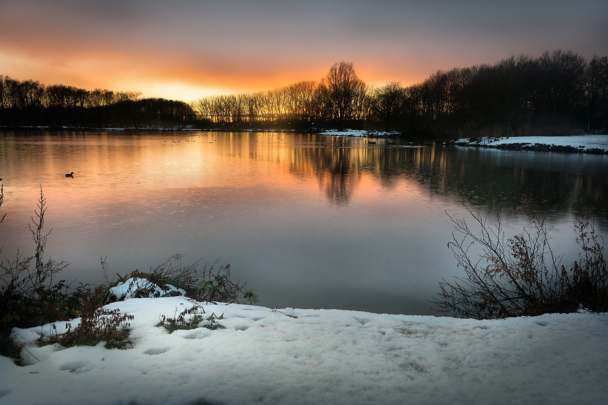 After the Snow  by Nelson Vieira