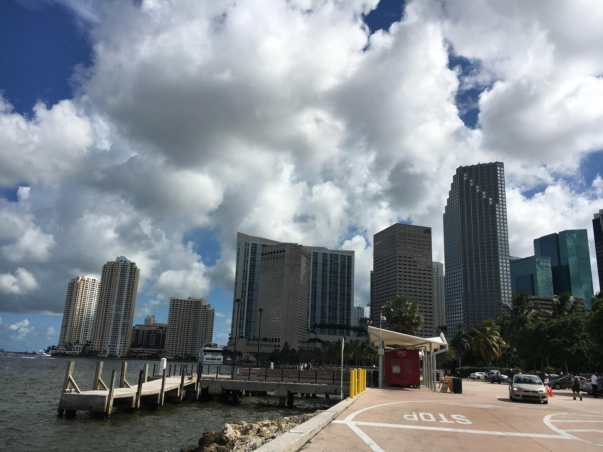 Miami by taimyM