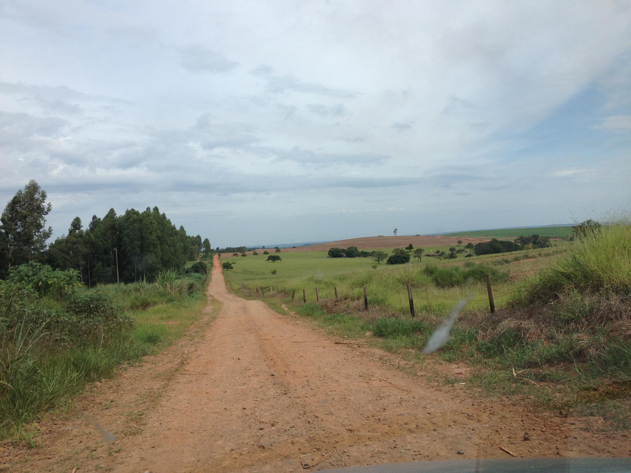 way the farm by Eduardo Campanha