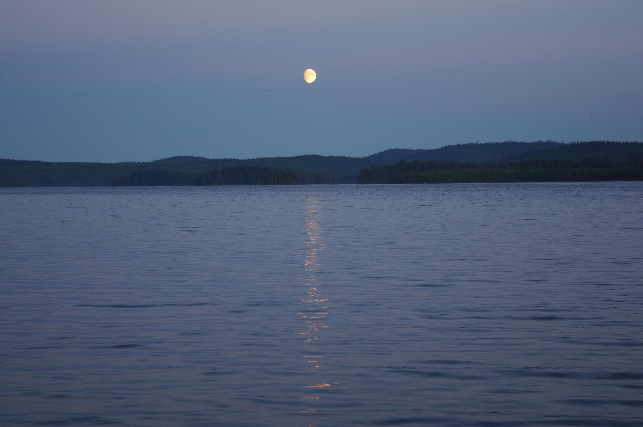 Midnight moon by eva.e.mabrouk