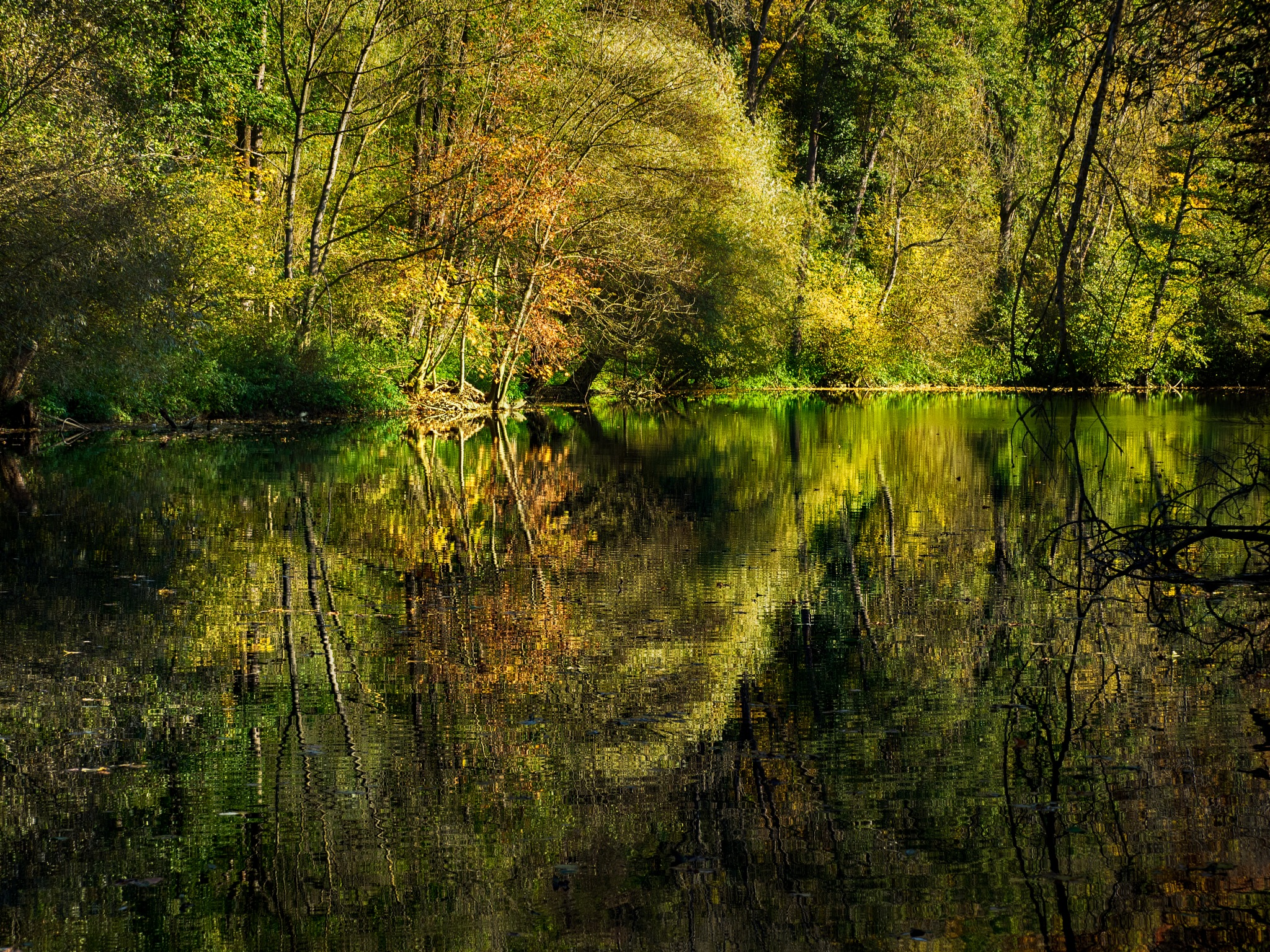 Autumn a the river by pixer