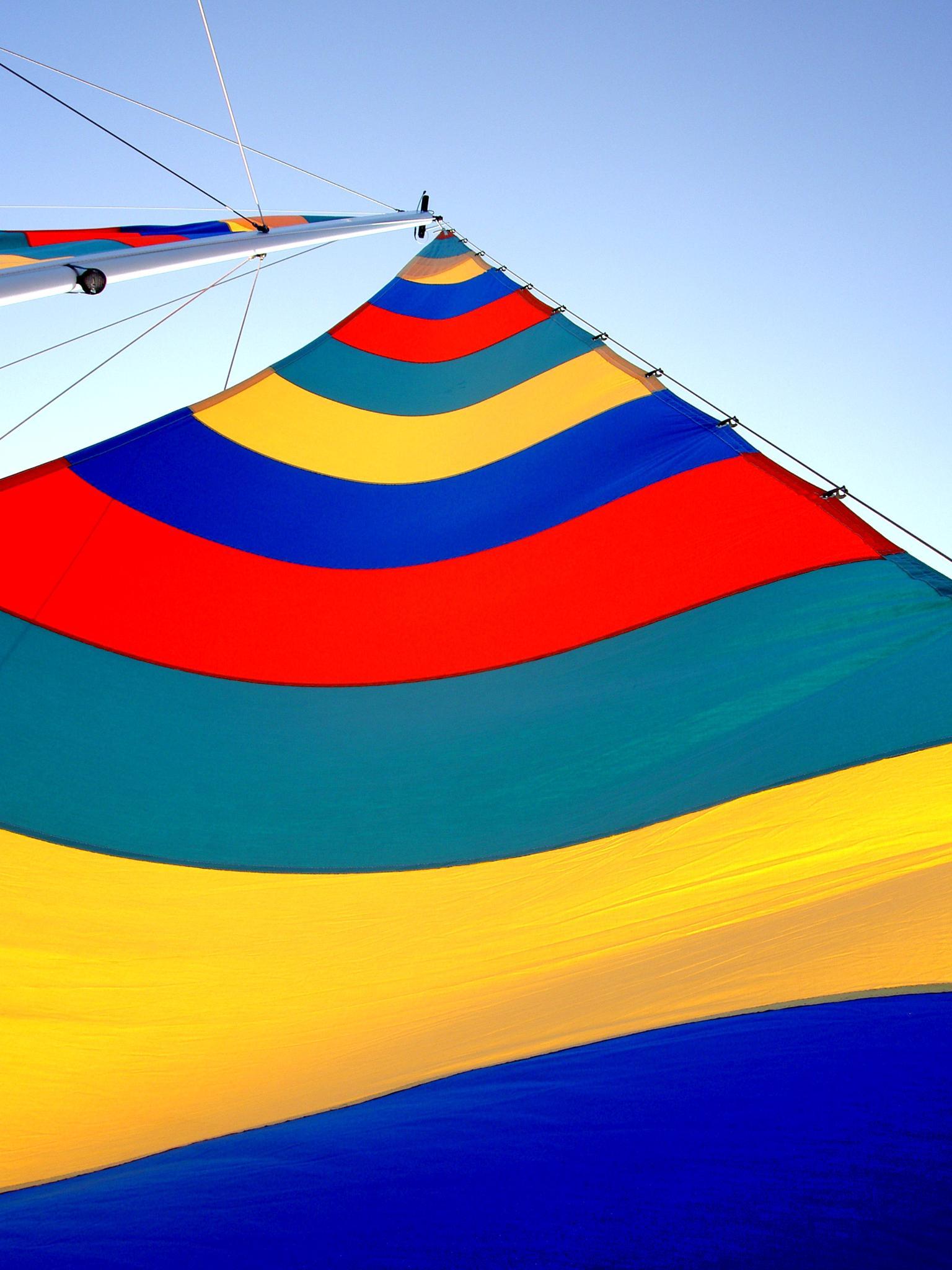 Mainsail and Mast by Terri Scache Harris