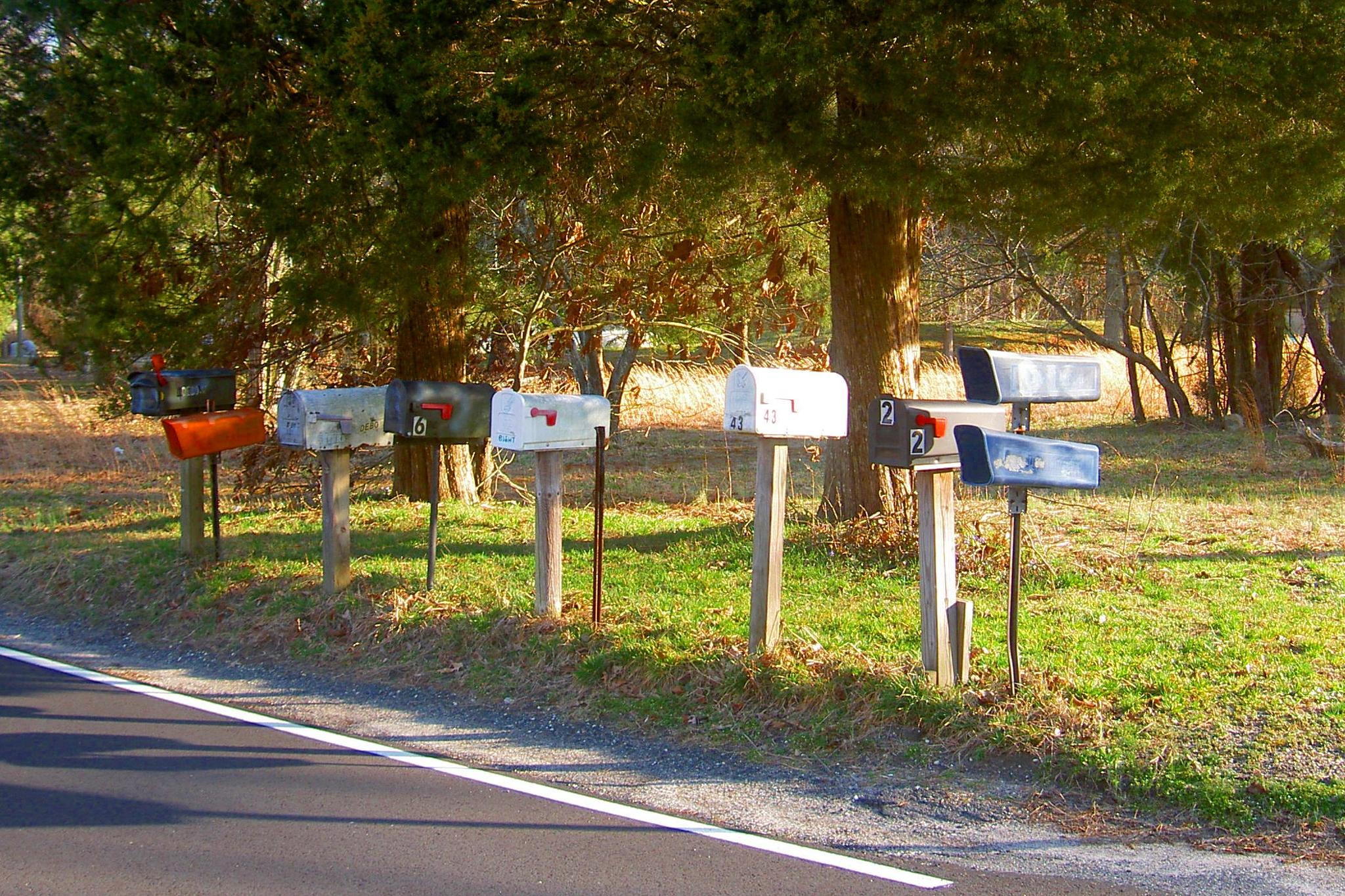 Waiting for Delivery by Terri Scache Harris