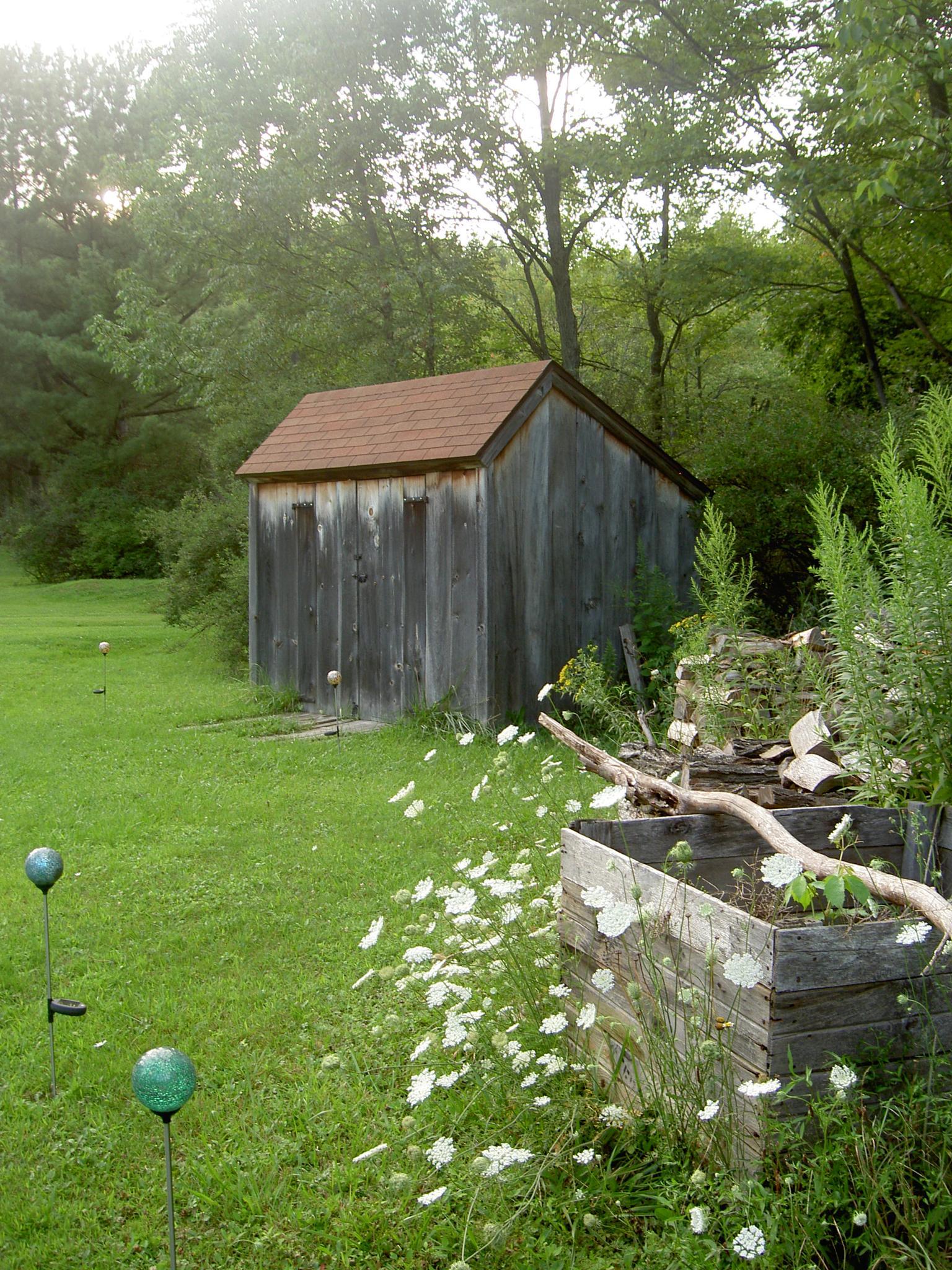 Garden Shed by Terri Scache Harris