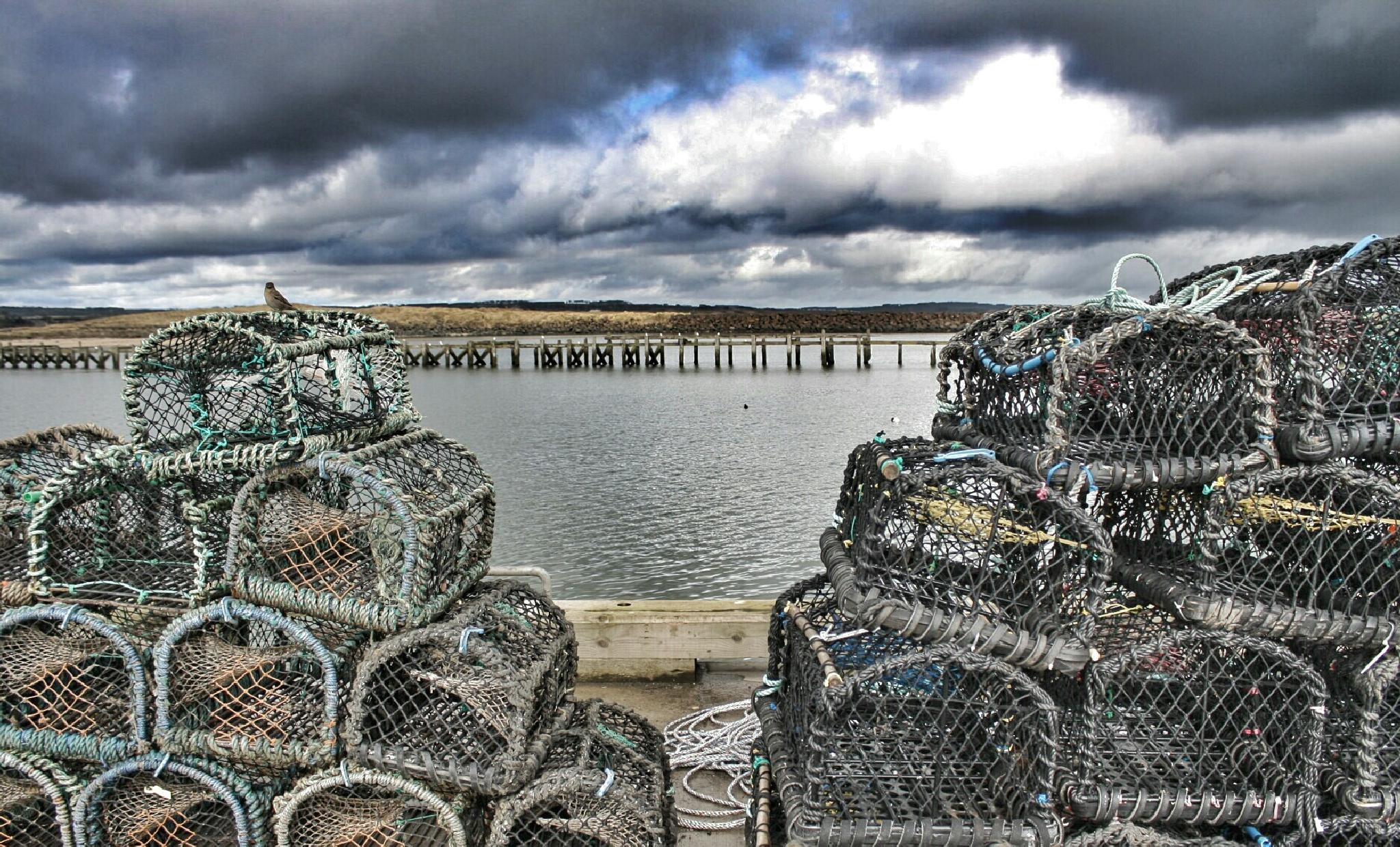 lobster pots by donuthead1