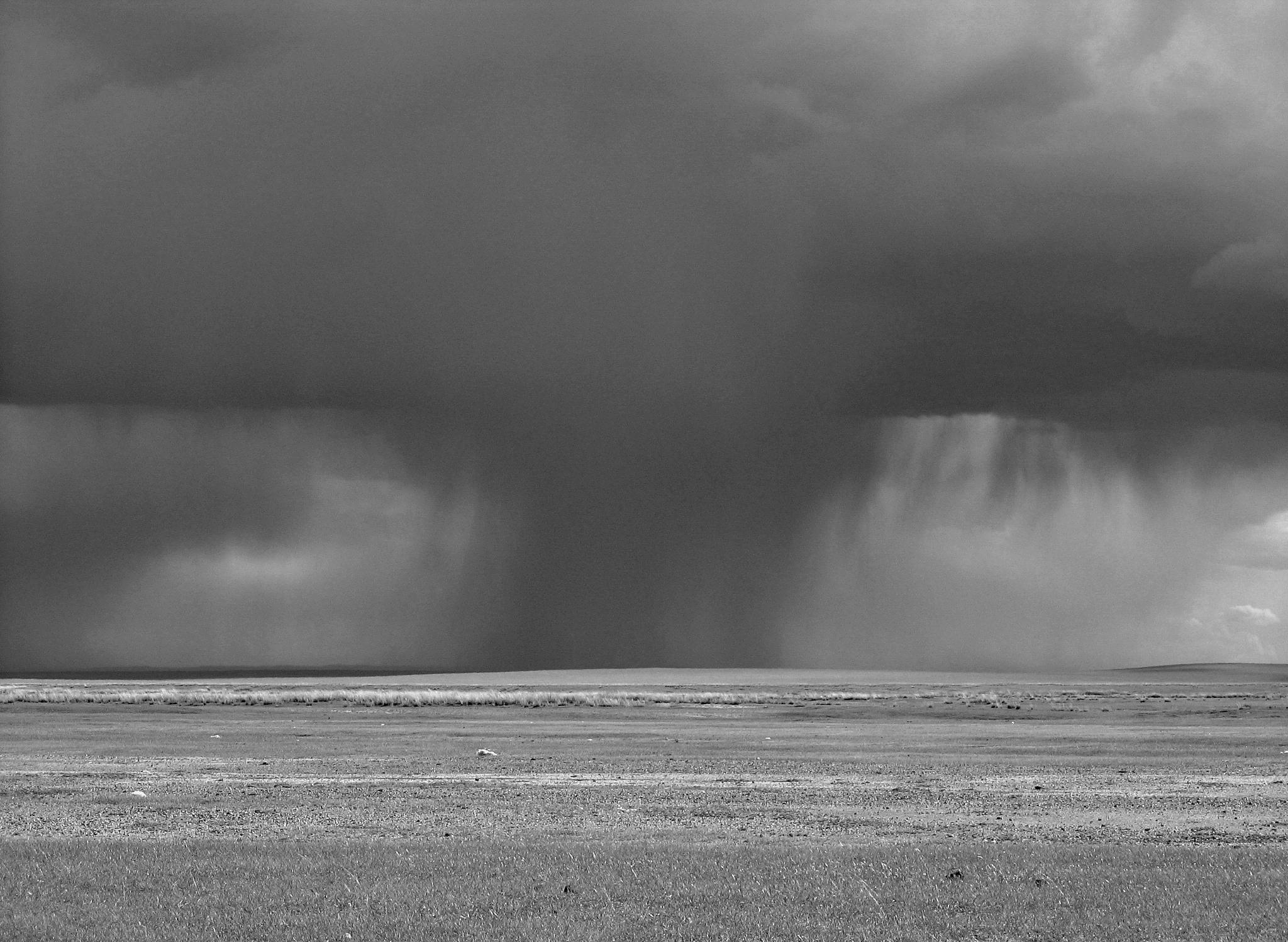 A rainy day on the prairie part of Gobi desert by KittySchulz
