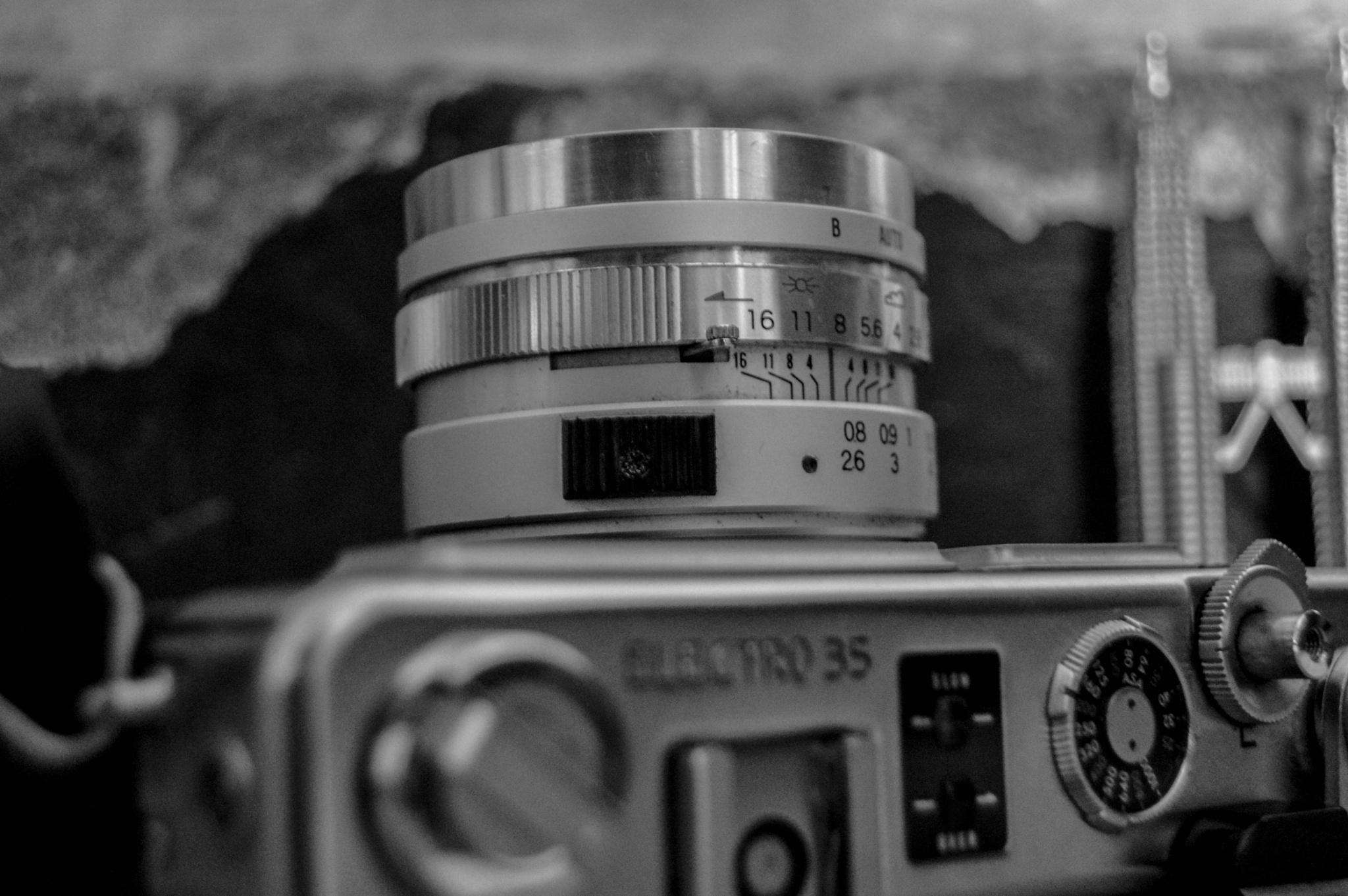 Camera by Waleed Elmiligy