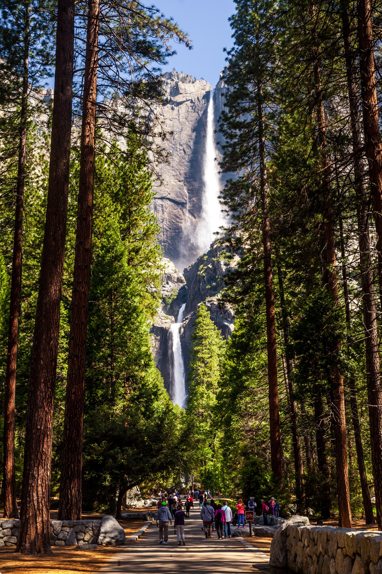 Spectacular Yosemite Falls by Michael Chlebek