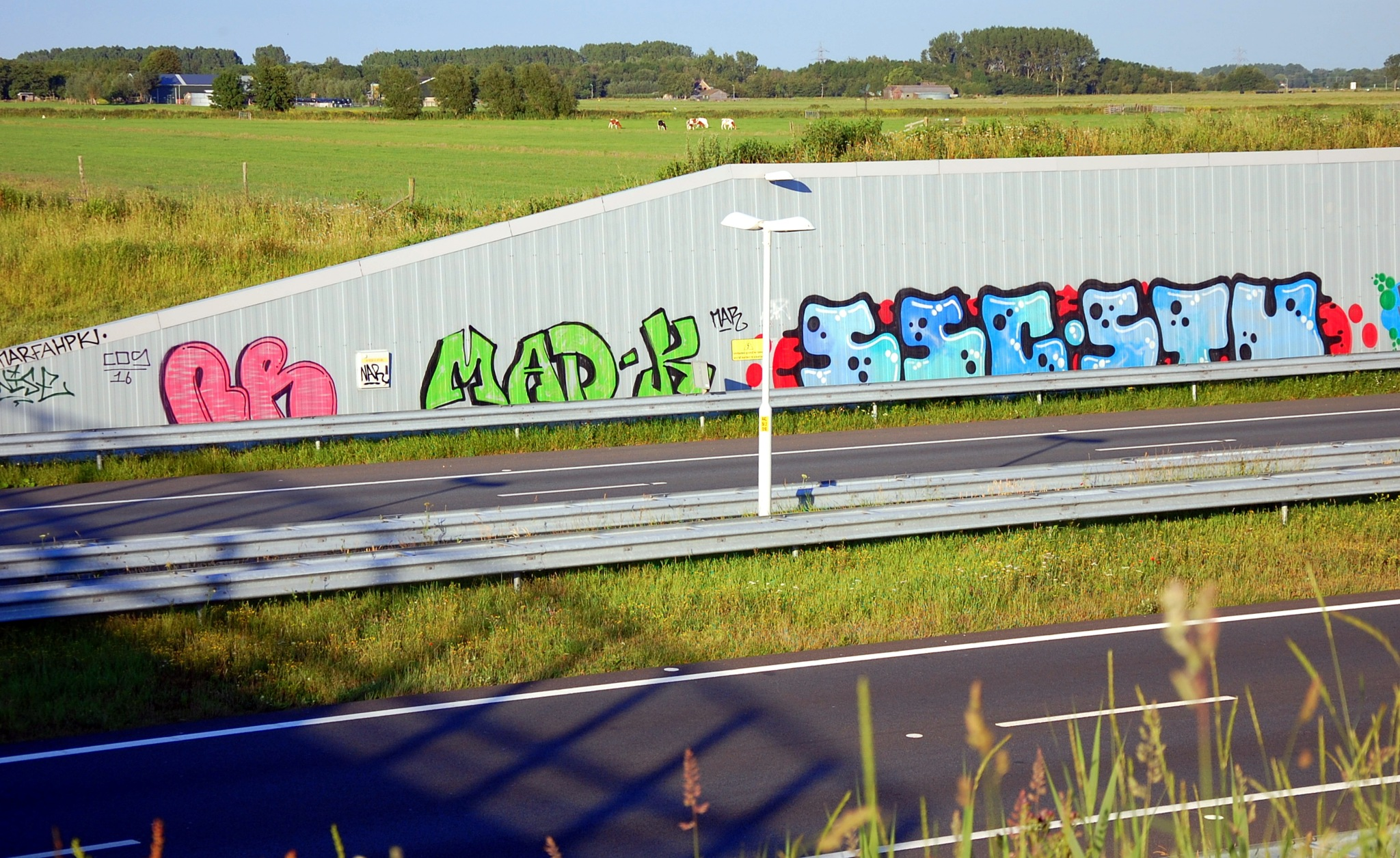 Graffiti And Grazing Cows by goga.dt