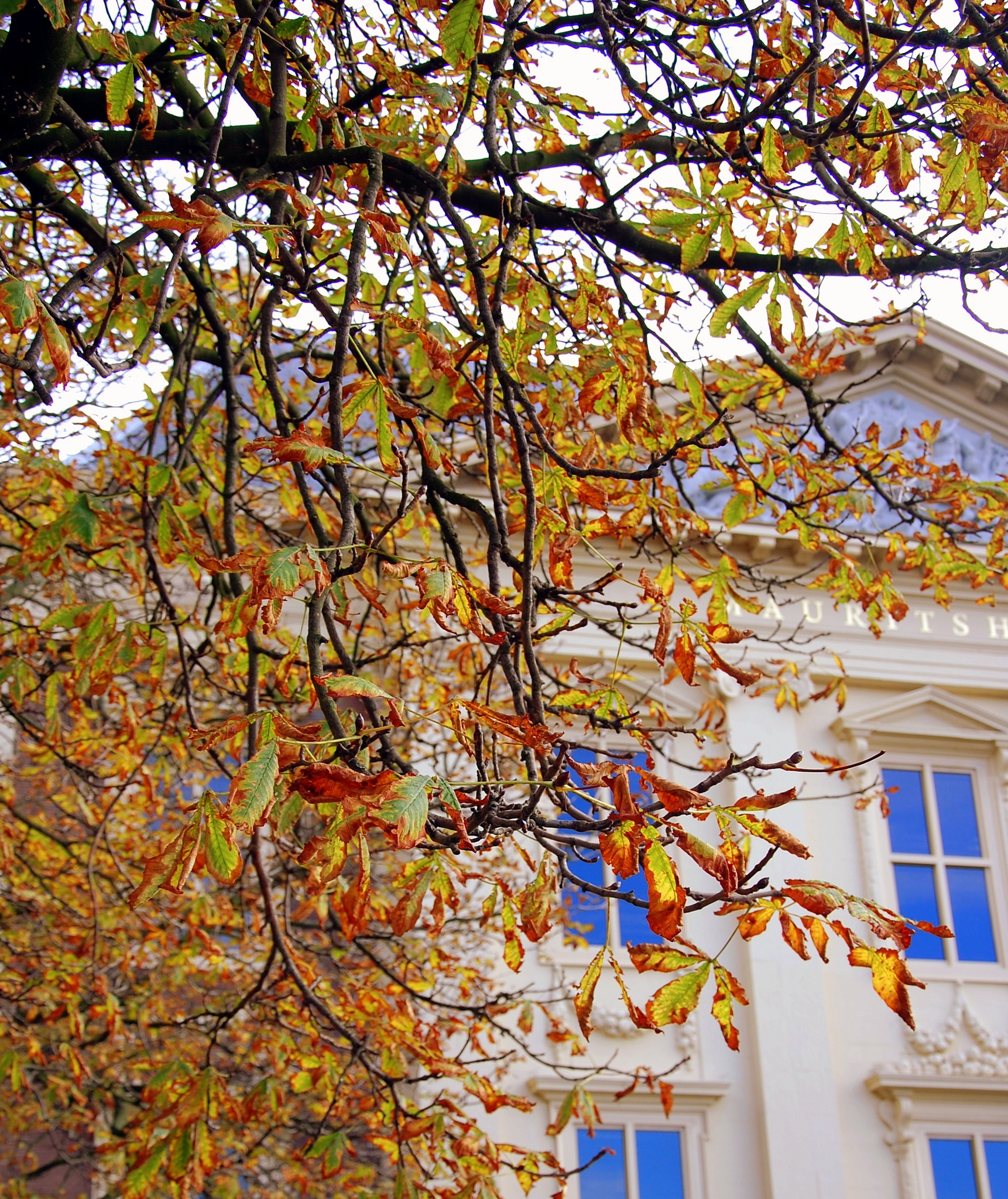 Autumn In The Hague by goga.dt