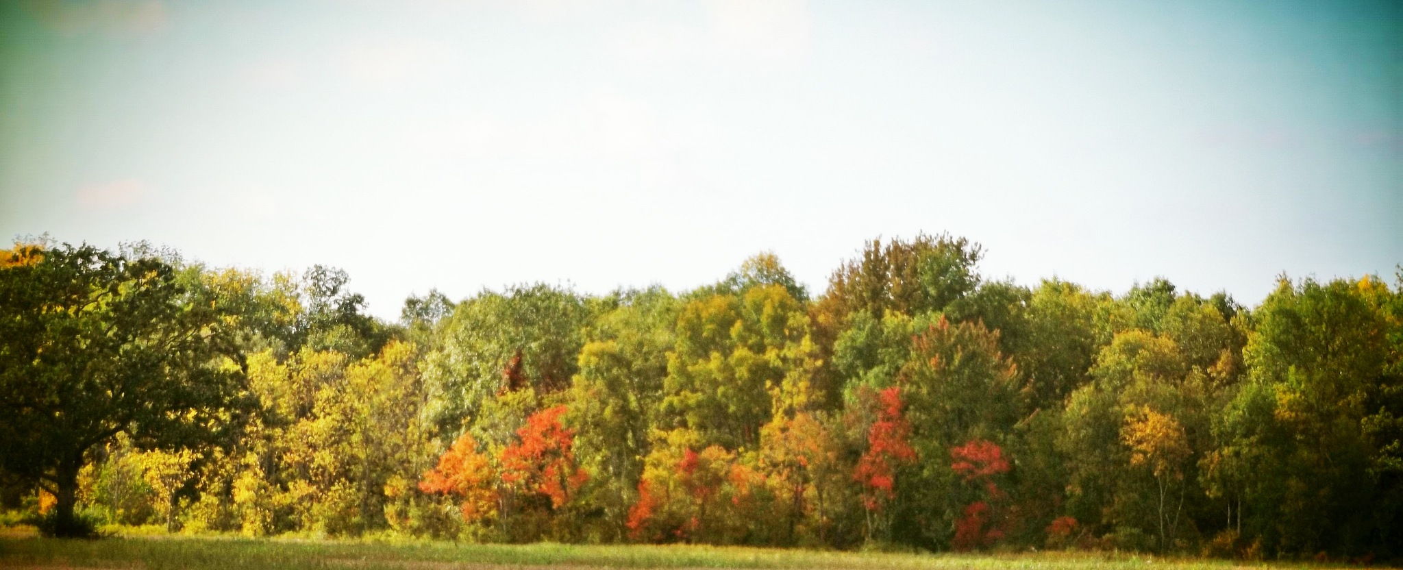 PICTURE PERFECT IN UPSTATE NEW YORK by Dawn Hoffmeister