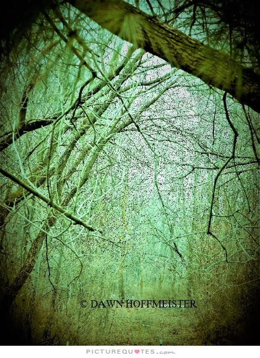 THE PATH by Dawn Hoffmeister