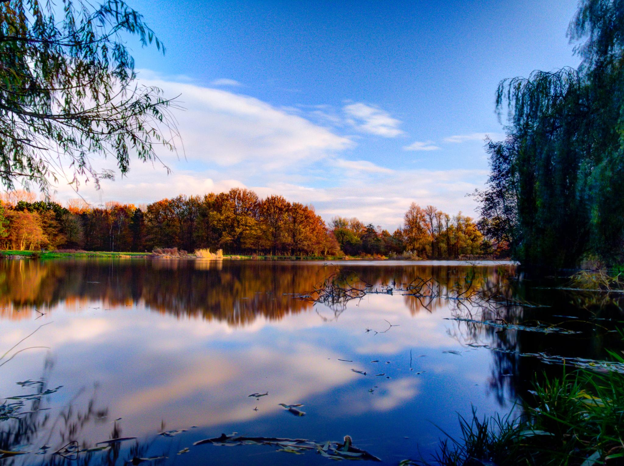 Reflection by Thijs Erends