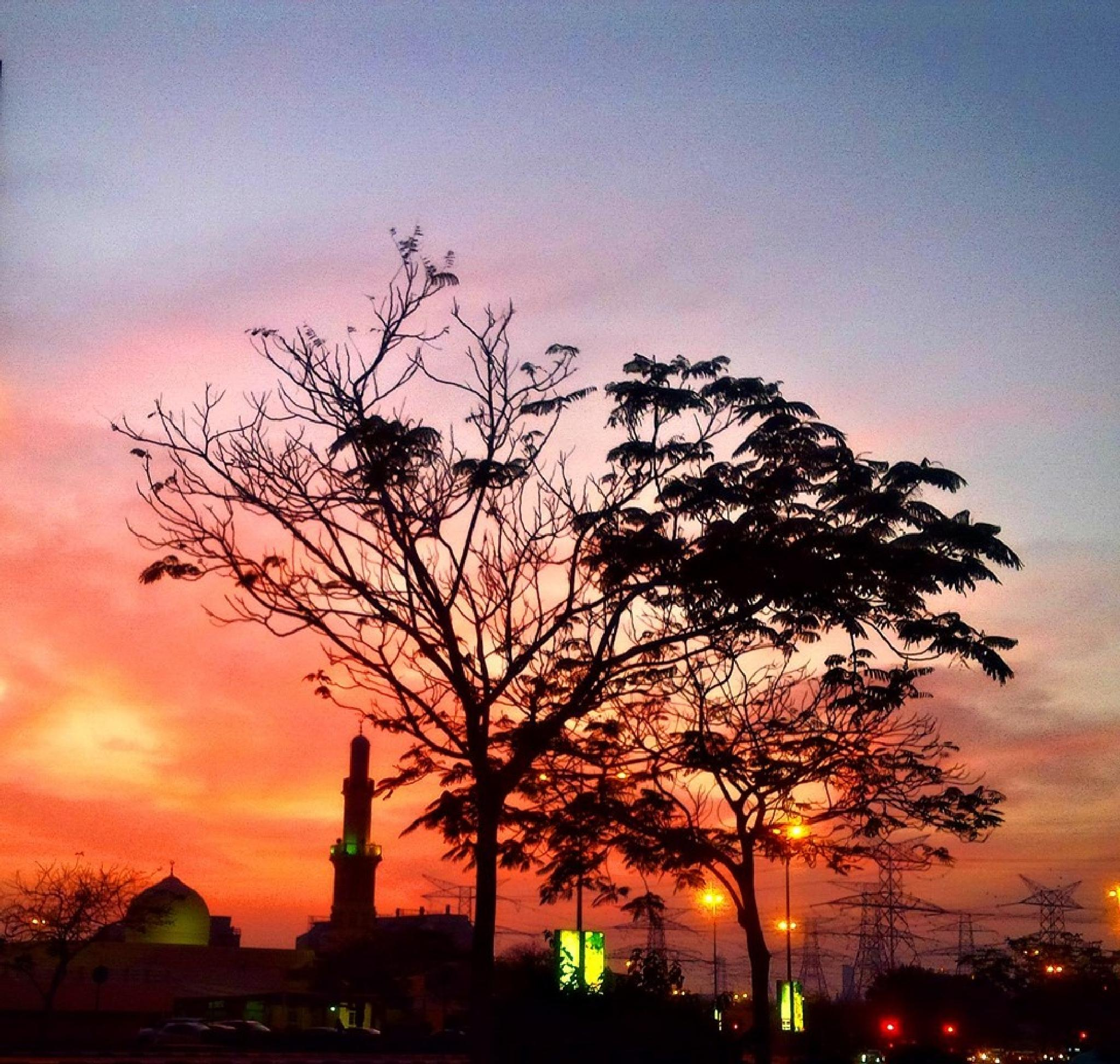 Sunset   by Mamata Mohapatra