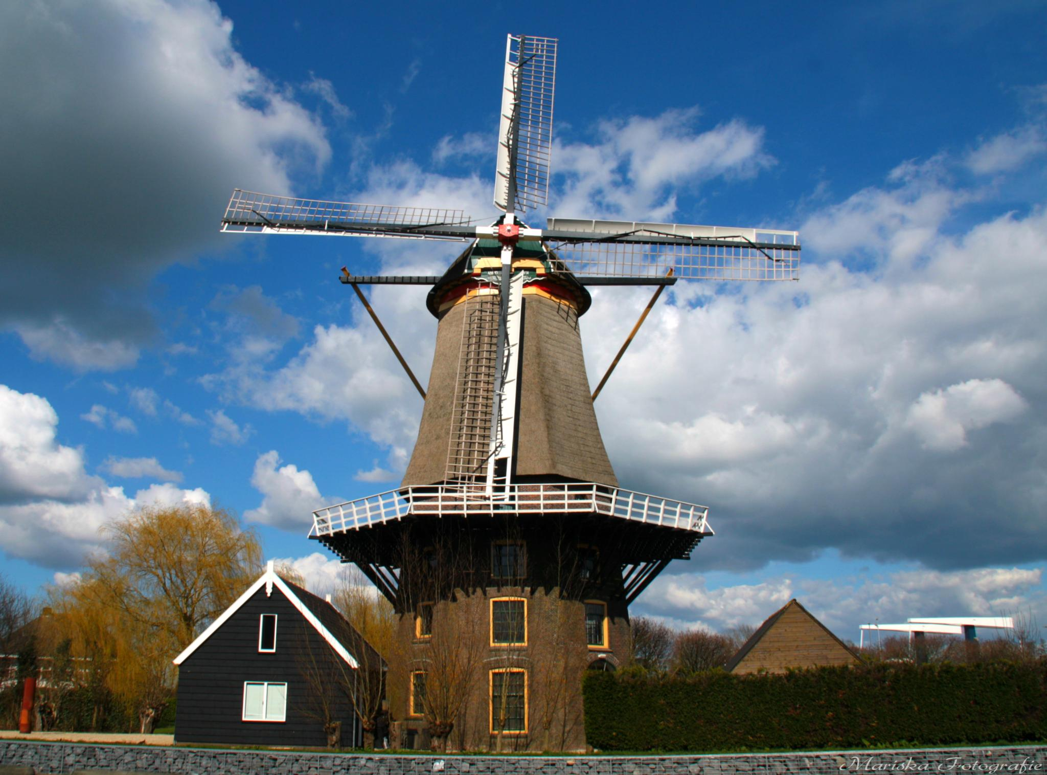 'Arkel' The Netherlands by Chaynasa