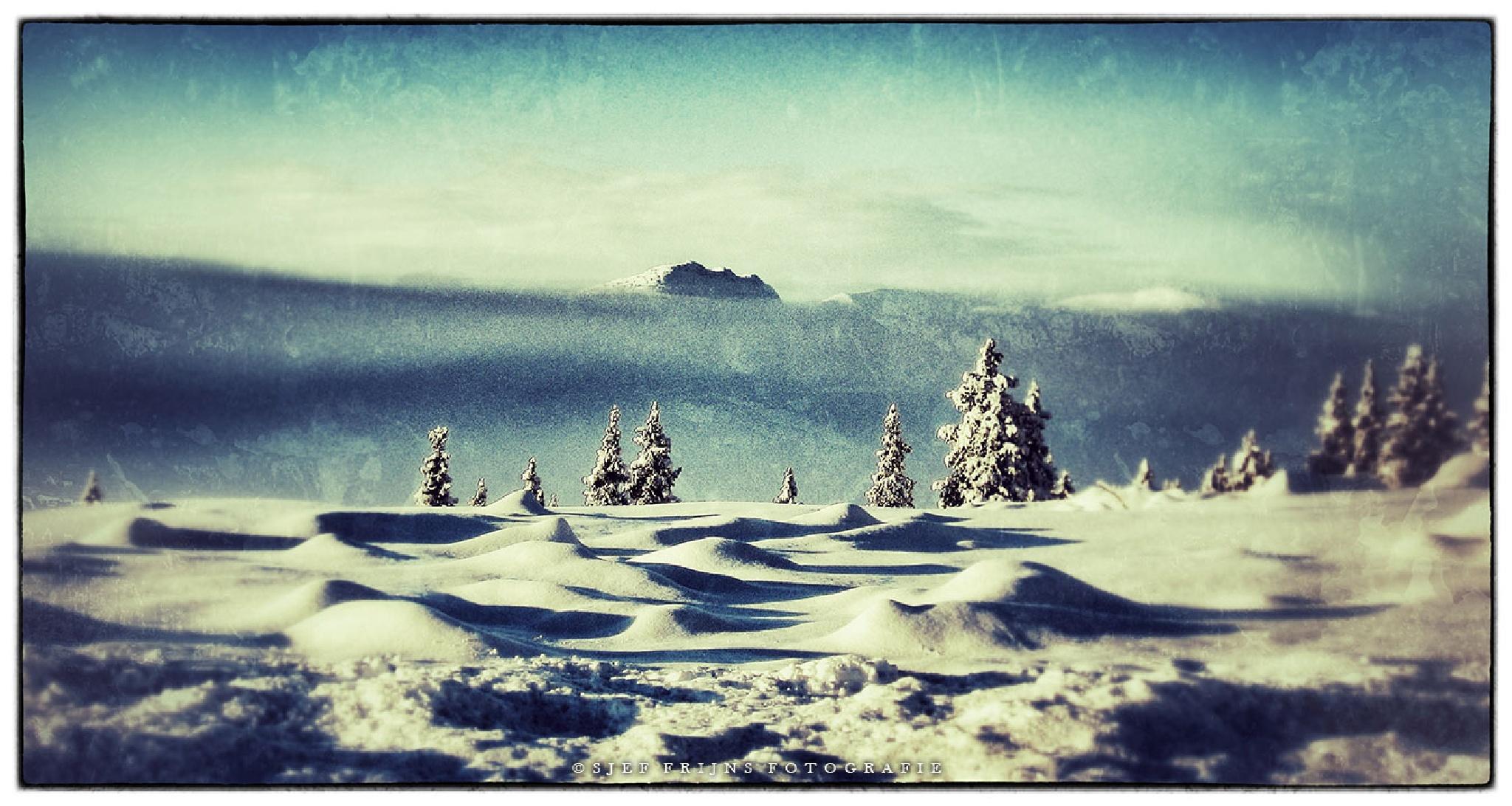 Norway in winter by sjef.frijns