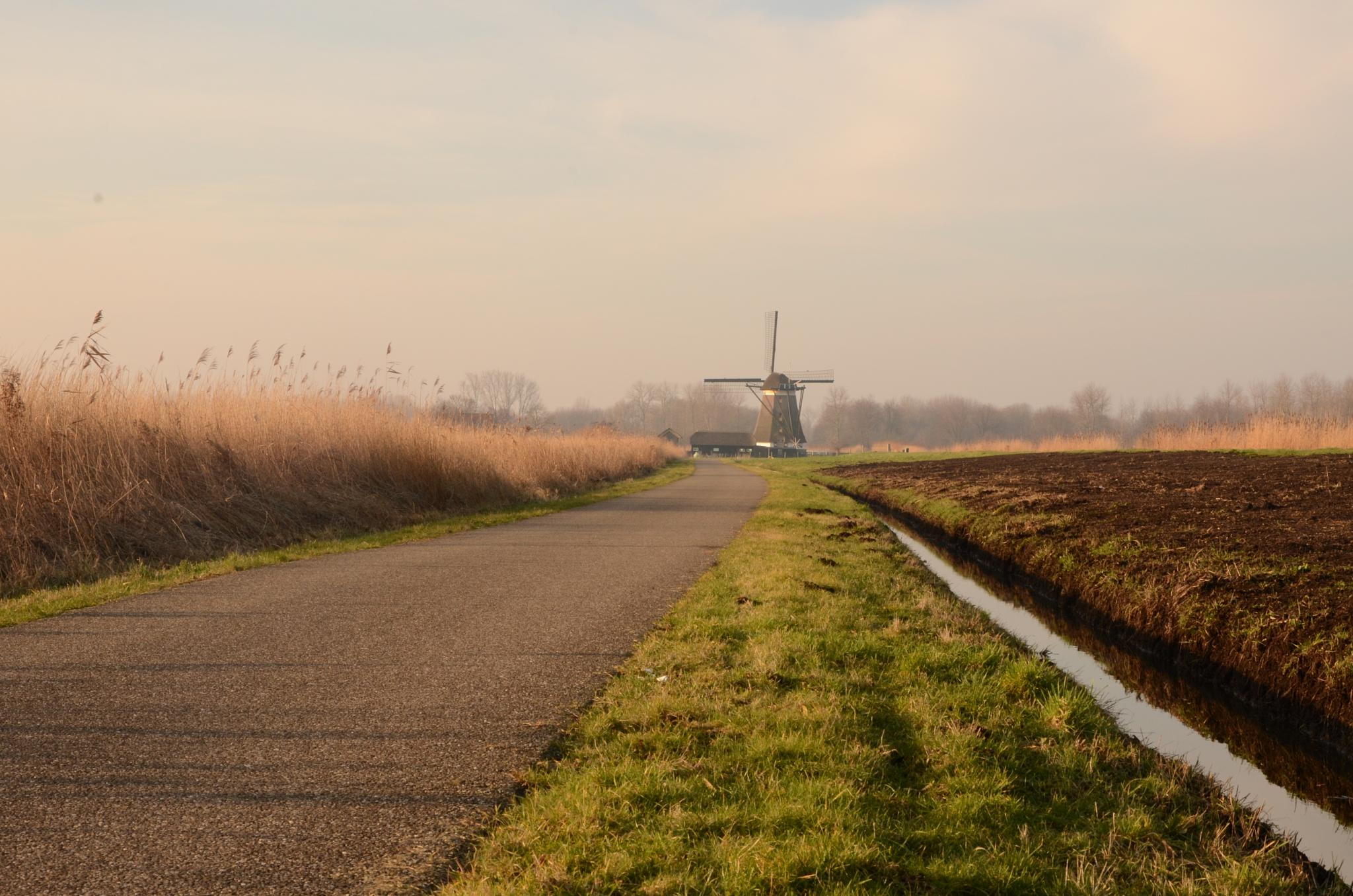 Windmill in Zevenhuizen by Rick.Engbers.5