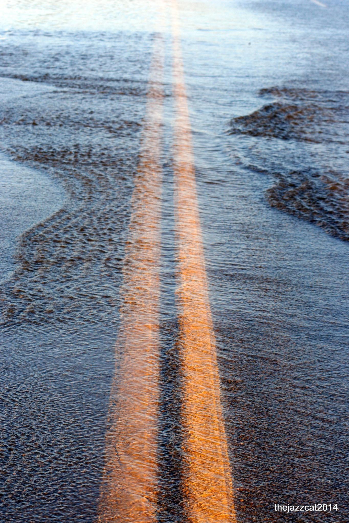 wet road by P. Michael Fadyk